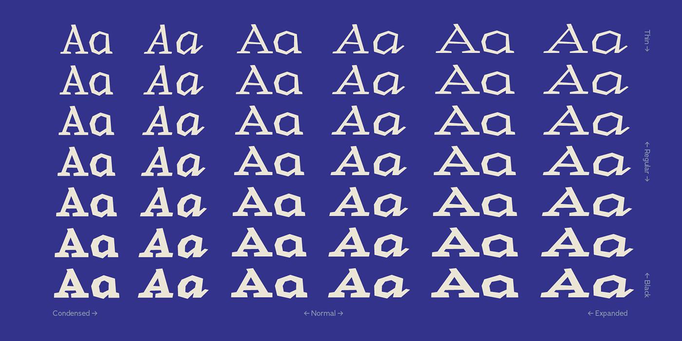 slab serif irregular shapes typography   font true italics summer Ocean Brazil Typeface contrast