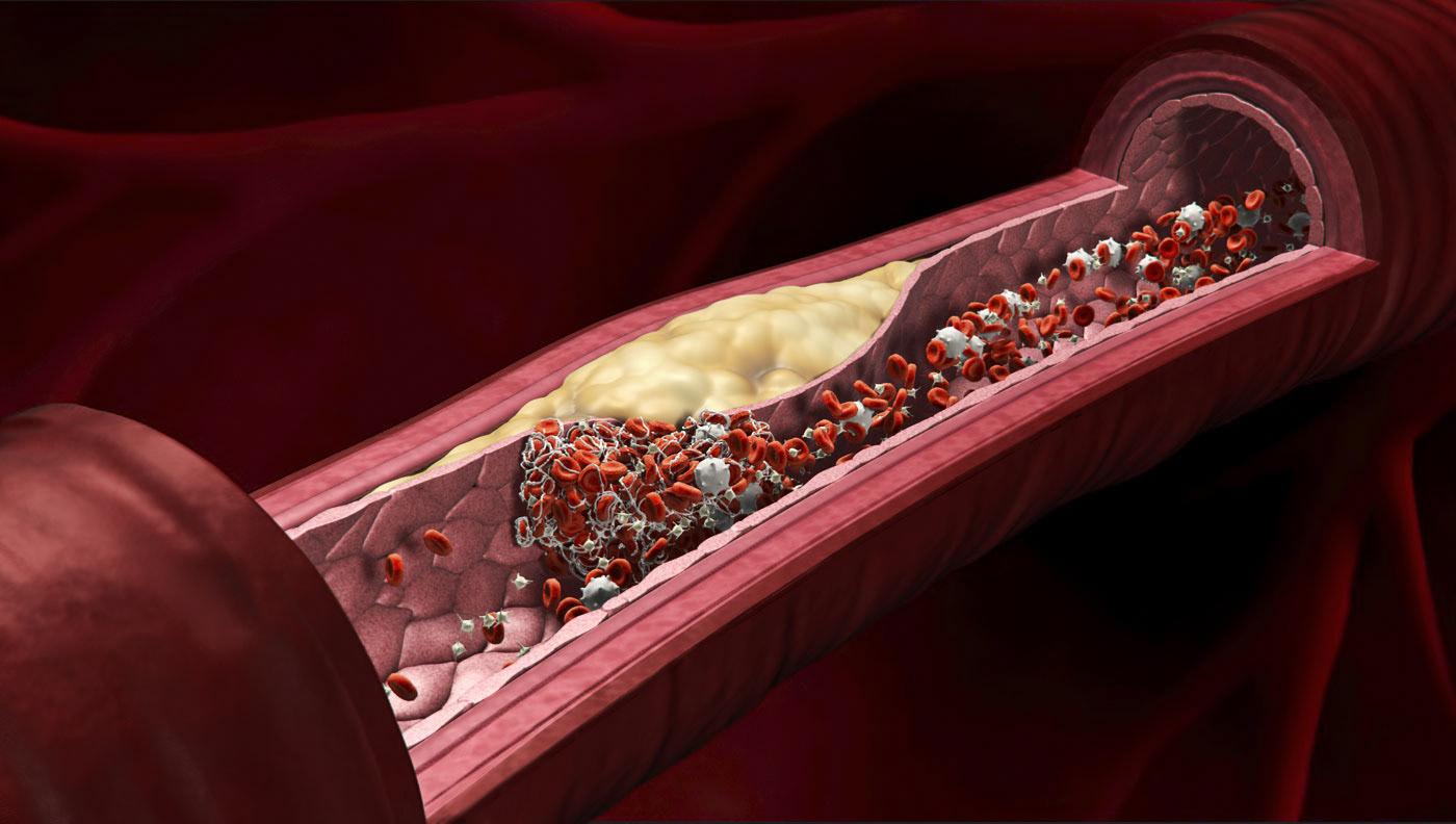 medical animation  3D 3d animation Pharmaceutical Pharma biology science cellular ILLUSTRATION