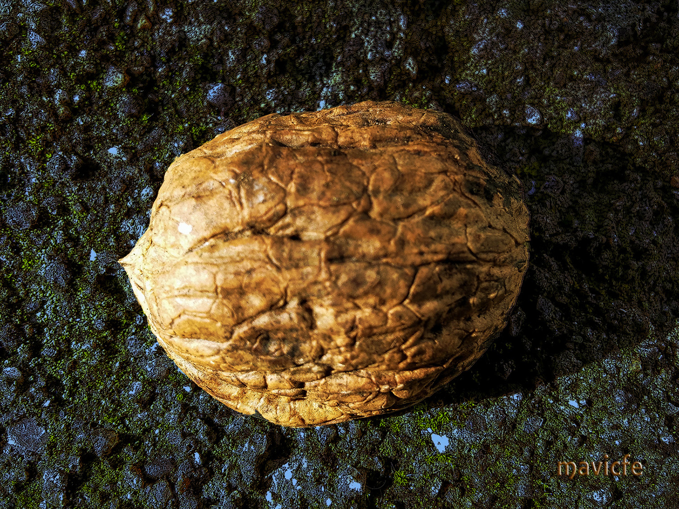 golden nut shell abstract background Granite stone rock bright mavicfe