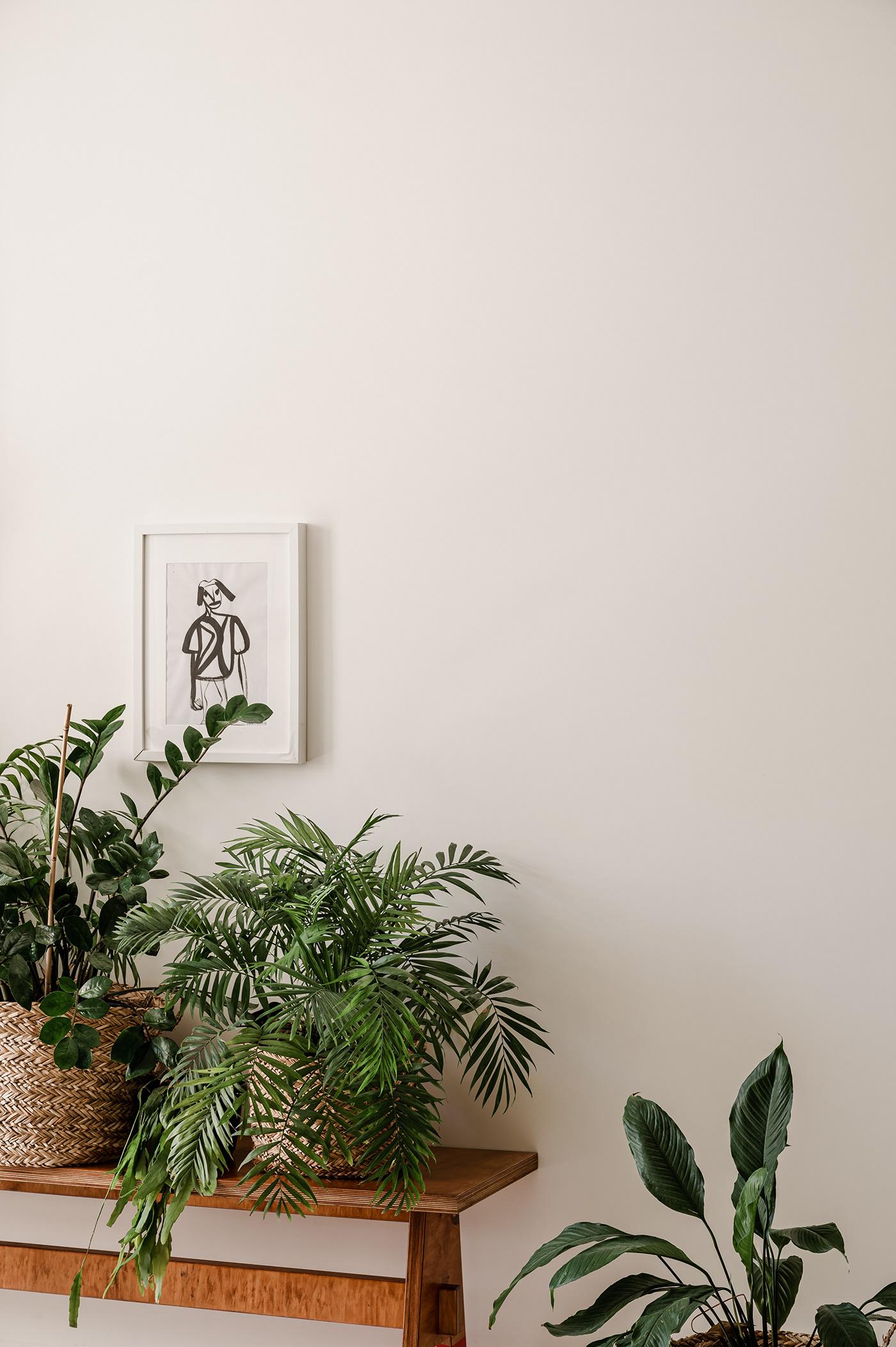apartment black green home light minimal Minimalism plants simple wood