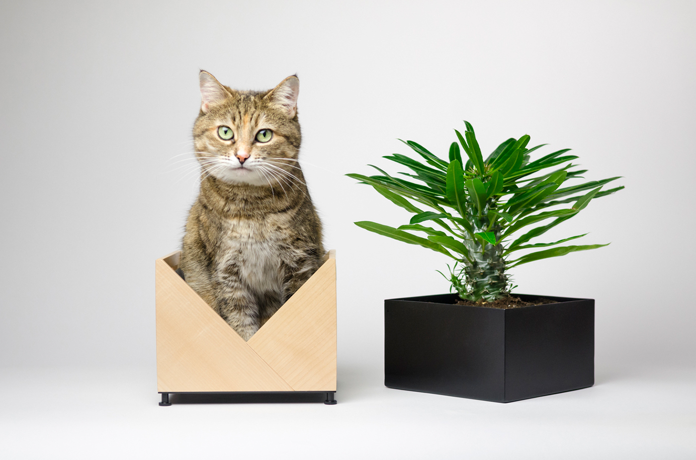 Flower Pot Origami On Behance
