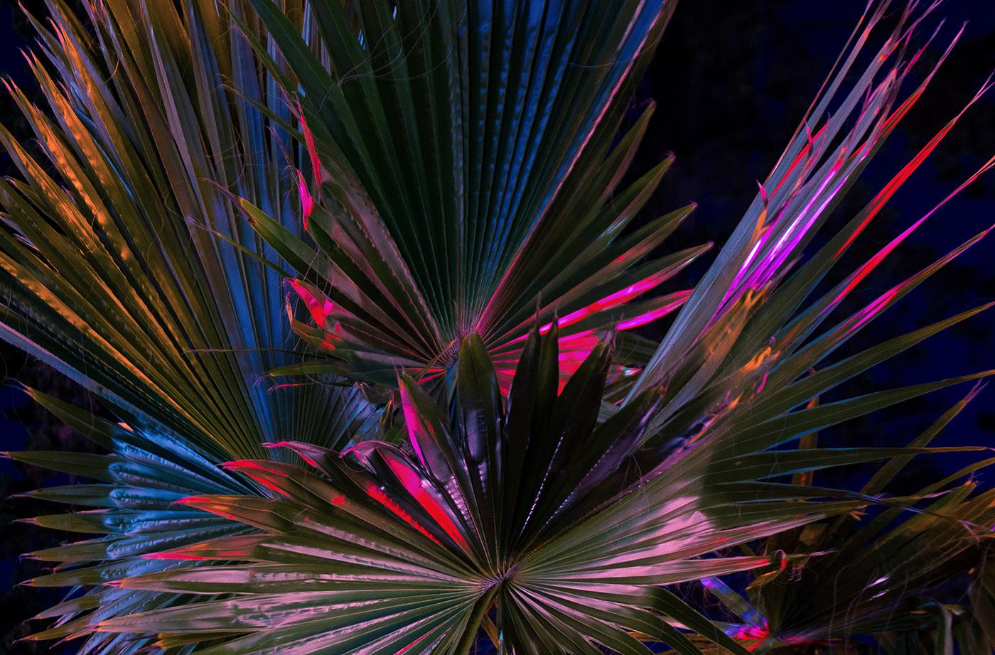 Neon Night On Behance