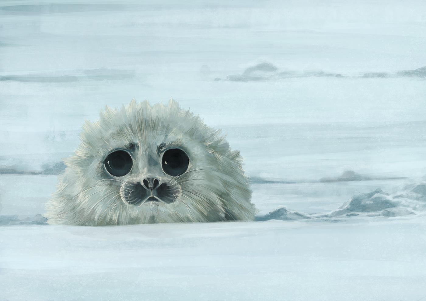 Arctic creature cute pup sad seal snow wildlife