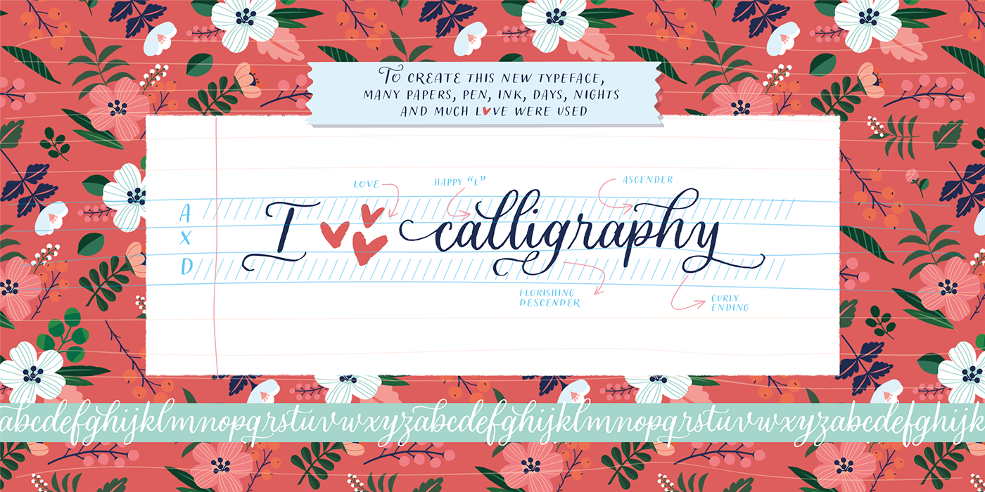 typography   Calligraphy   lettering informal sudtipos font graphic design  ILLUSTRATION