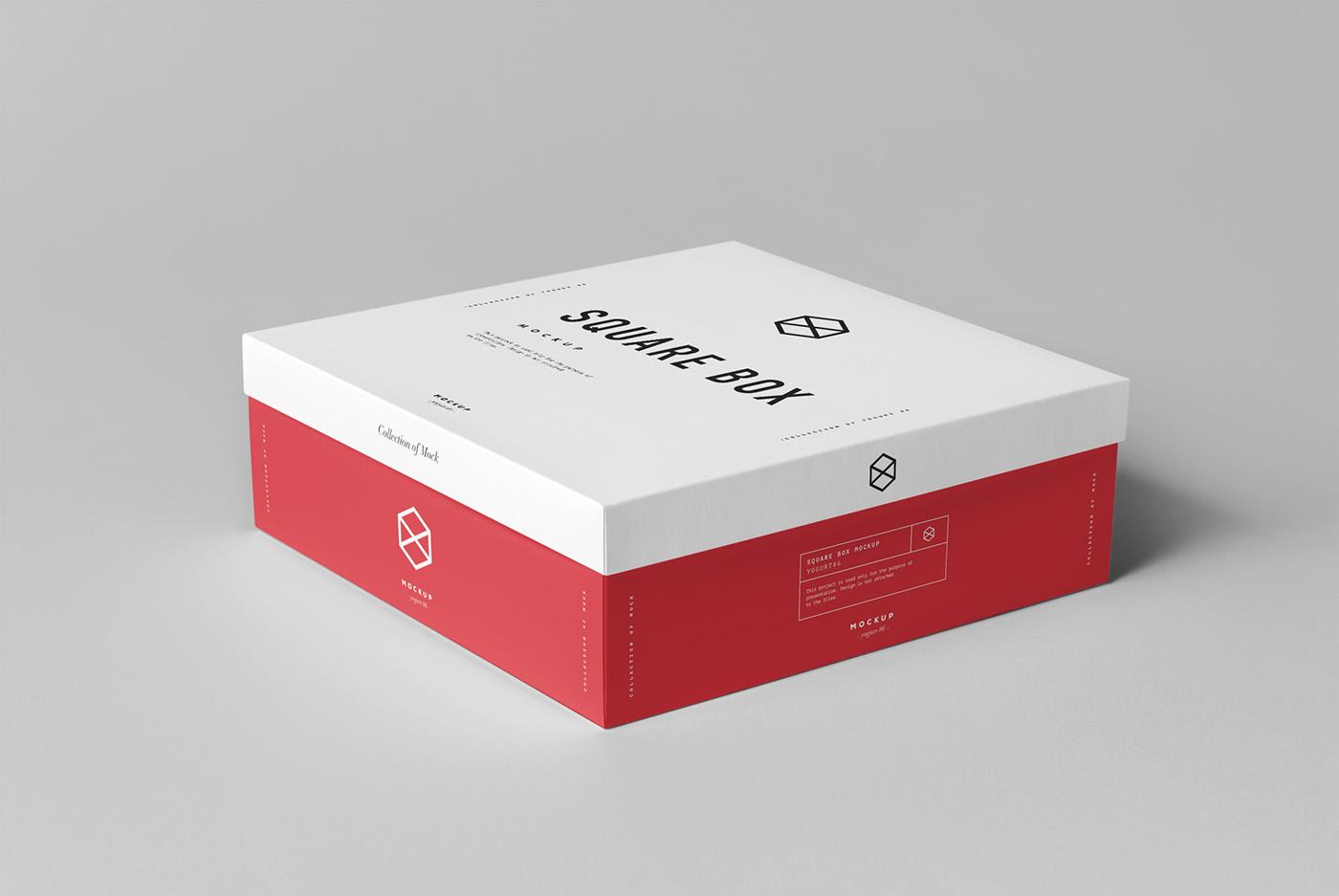 高質感的24套鞋盒包裝設計欣賞