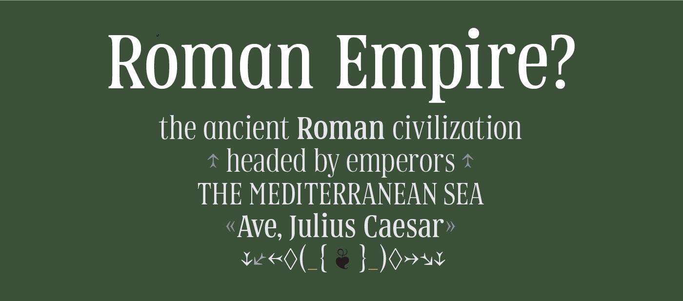 Typeface serif vintage Retro font typedesign Typespecimen typography   Display typefoundry