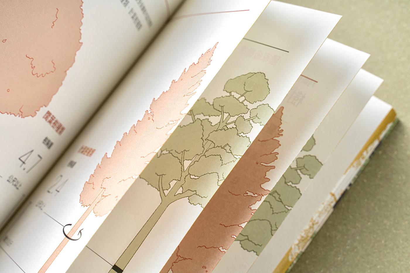 臺北,臺灣,樹木,自然,印刷,編輯,設計