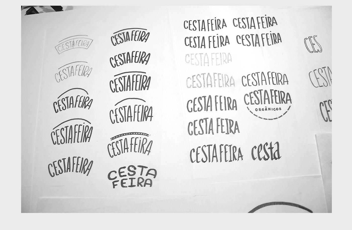 Cesta Feira organic healthy plomo71 Food  green clean