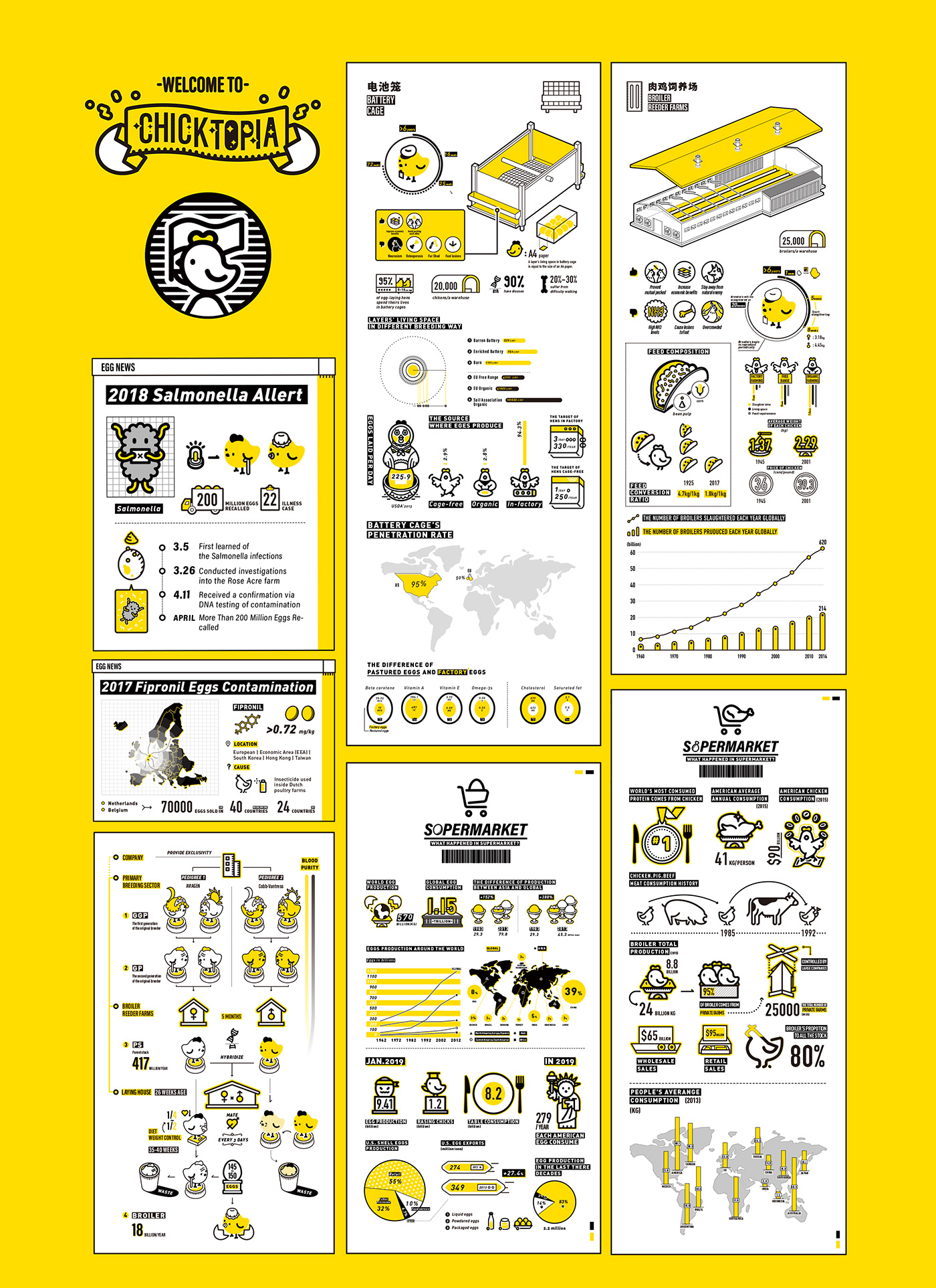 infographic design,chicken,信息可视化,graphic design ,ILLUSTRATION ,Factory Farming,MG animation,package design ,animal,Food