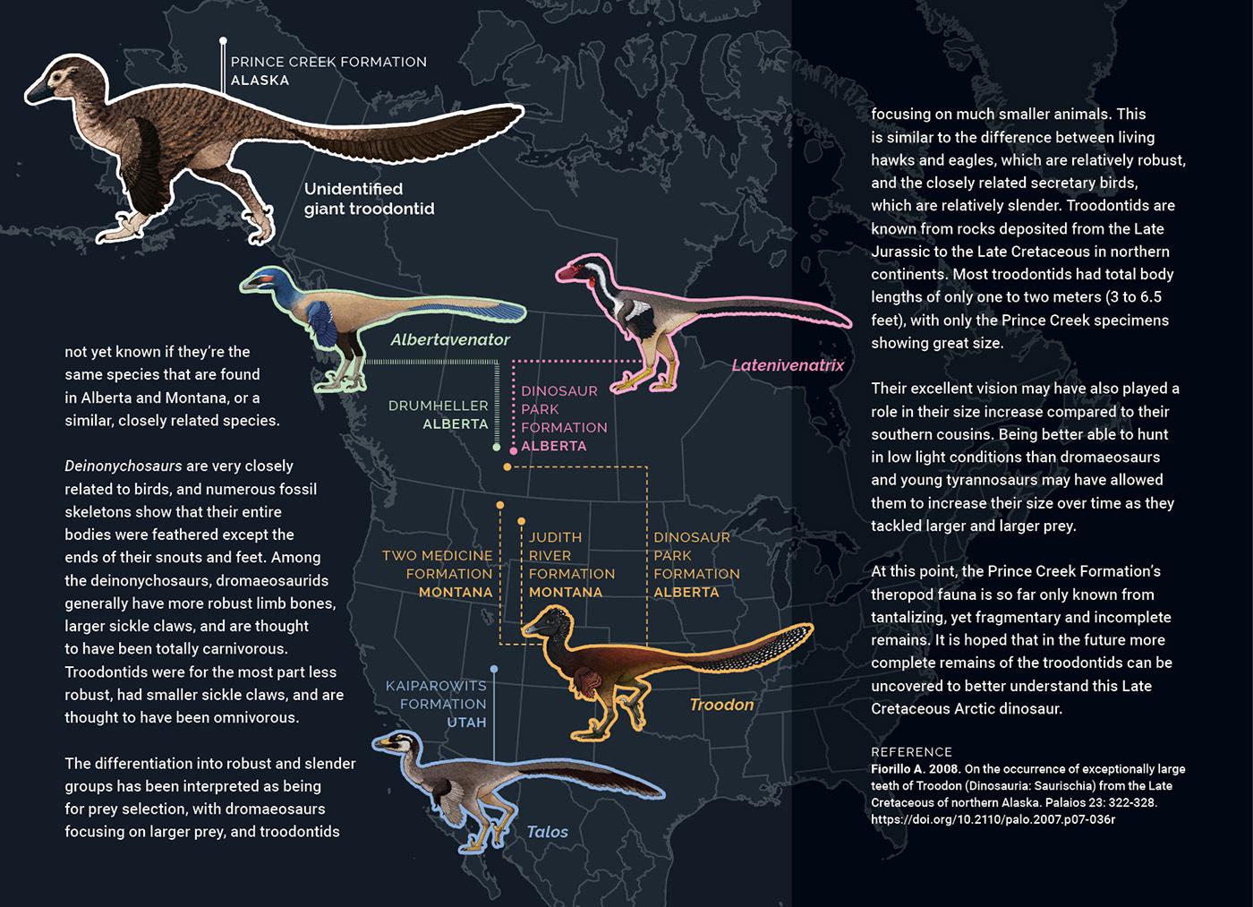 Dinosaur paleontology paleoart science scientific illustration raptor animal bird creature Fossil