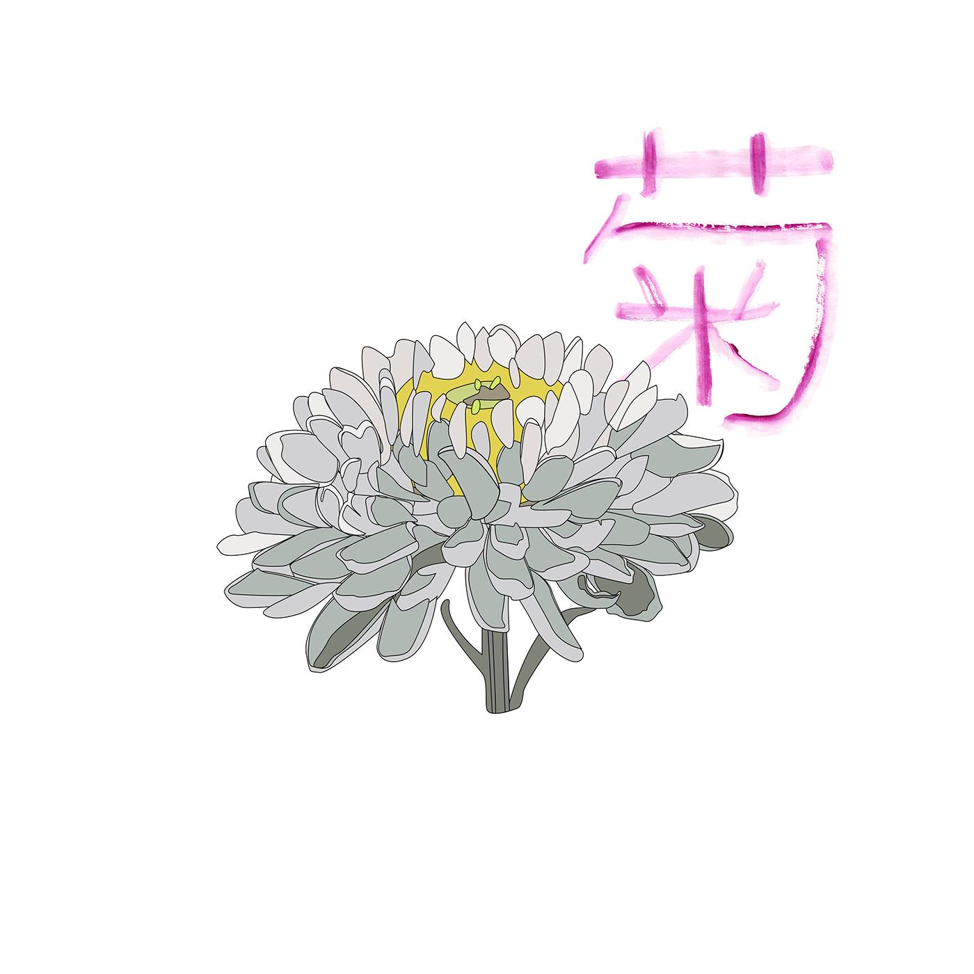 Hanakatoba The Language Of Flowers On Behance