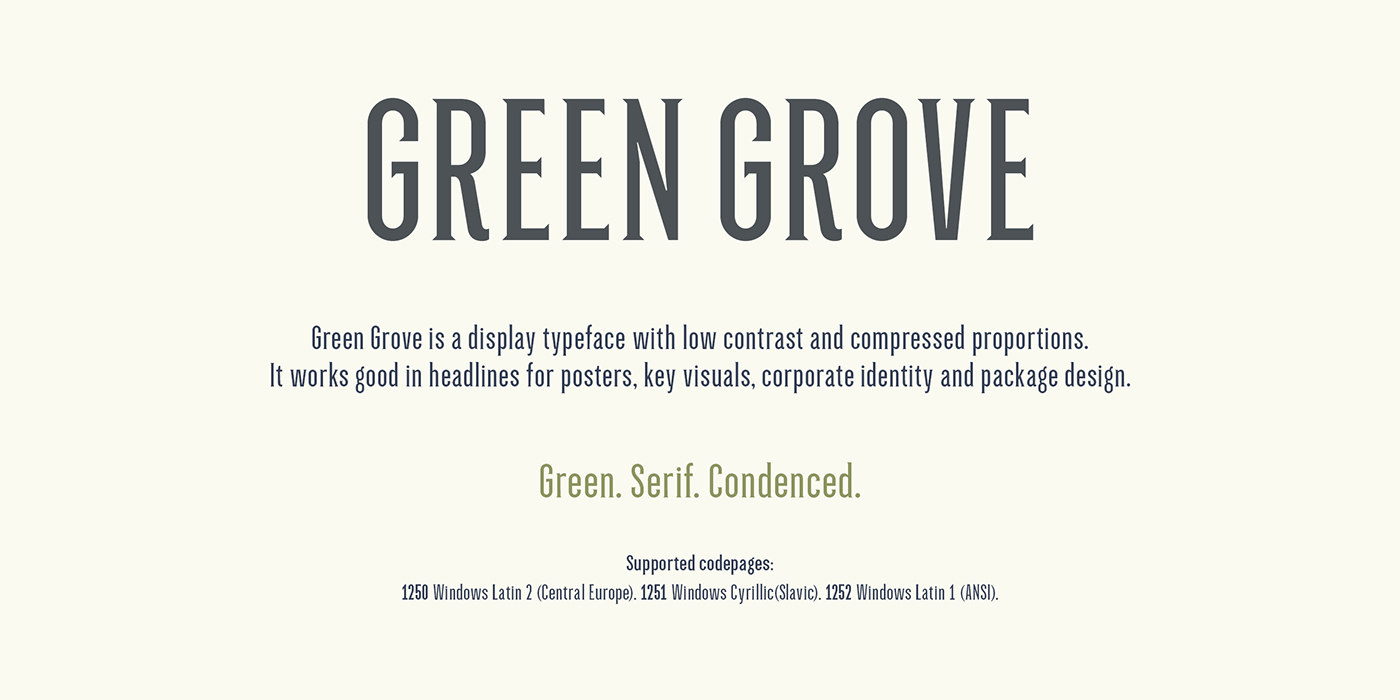 type font typography   Display Condenced Typeface serif Logotype branding  Packaging