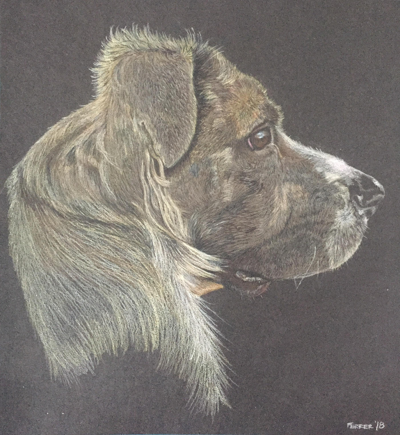 painting   Drawing  ILLUSTRATION  Pastels colored pencils pen ink