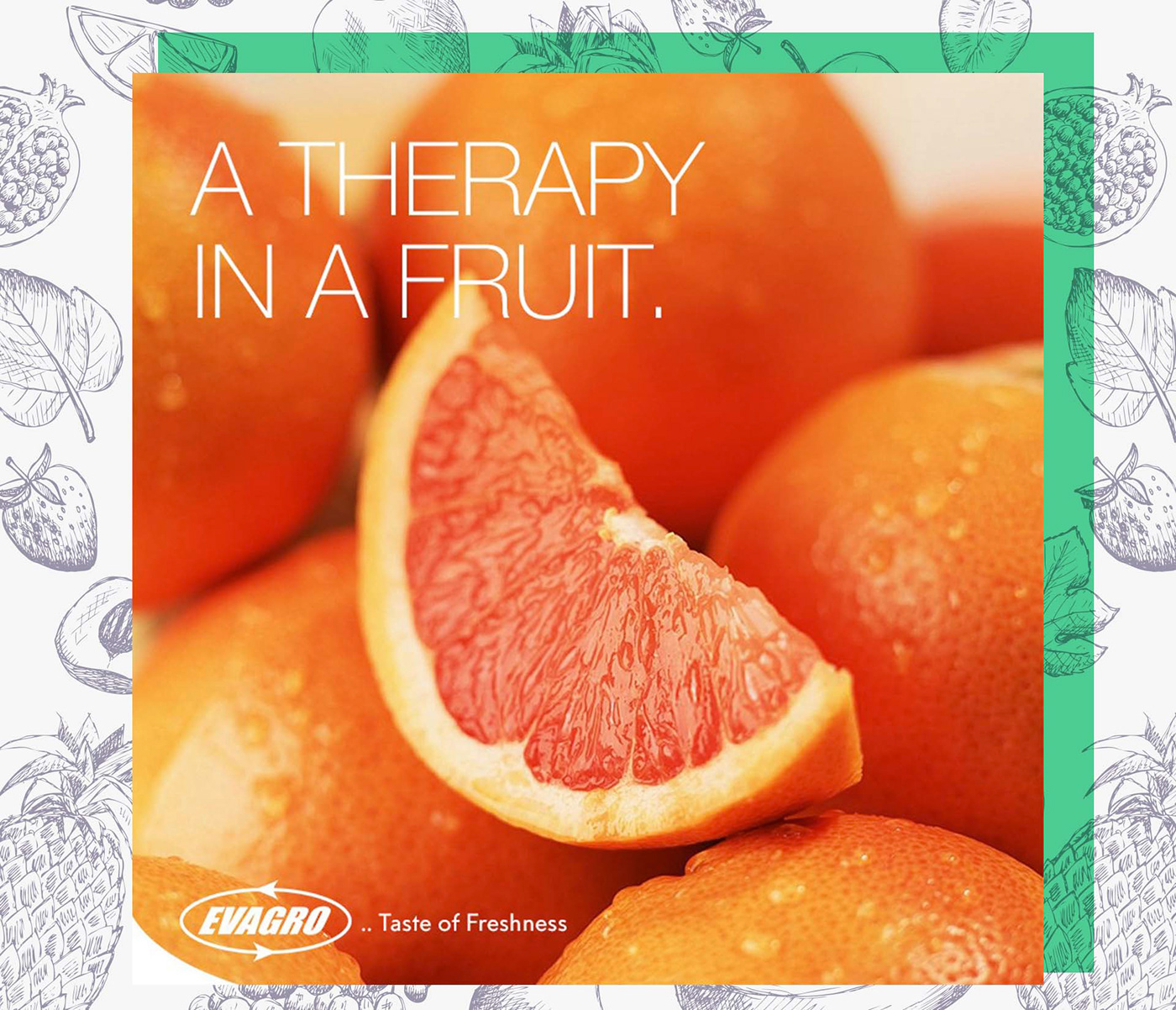 Image may contain: orange, grapefruit and lemon