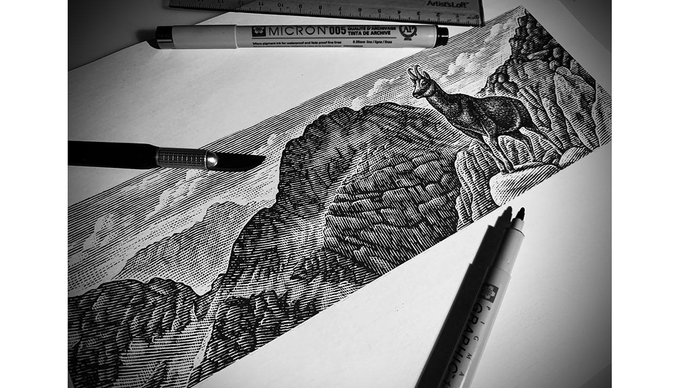 beer label etching ink Art Landscape line art pen and ink scratchboard Steven Noble woodcut