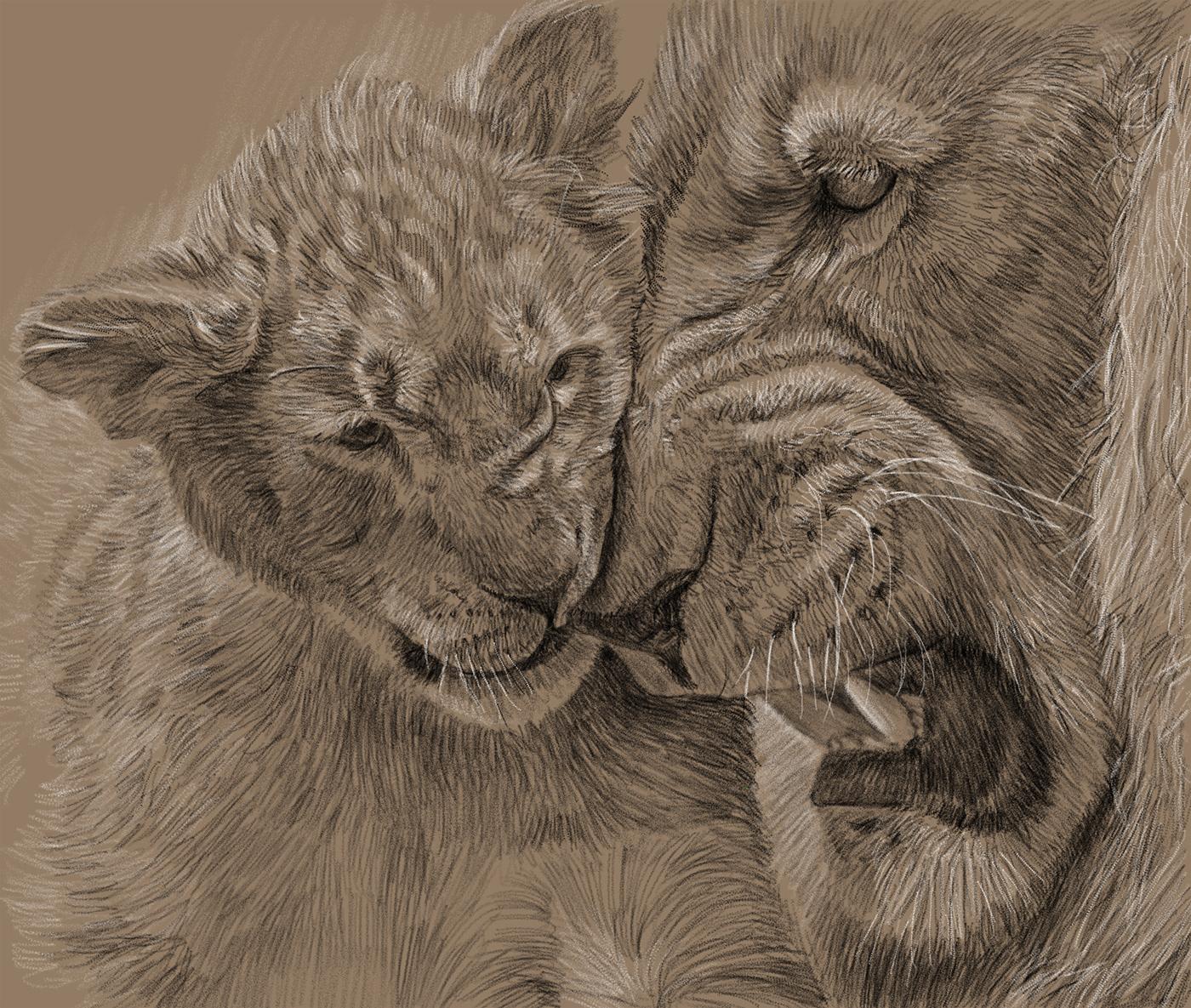 Image may contain: animal, mammal and big cat