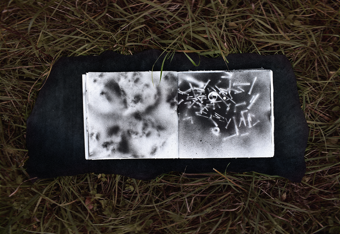 artist book painting   Drawing  Calligraphy   black and white Nature wild art Photography  minimal