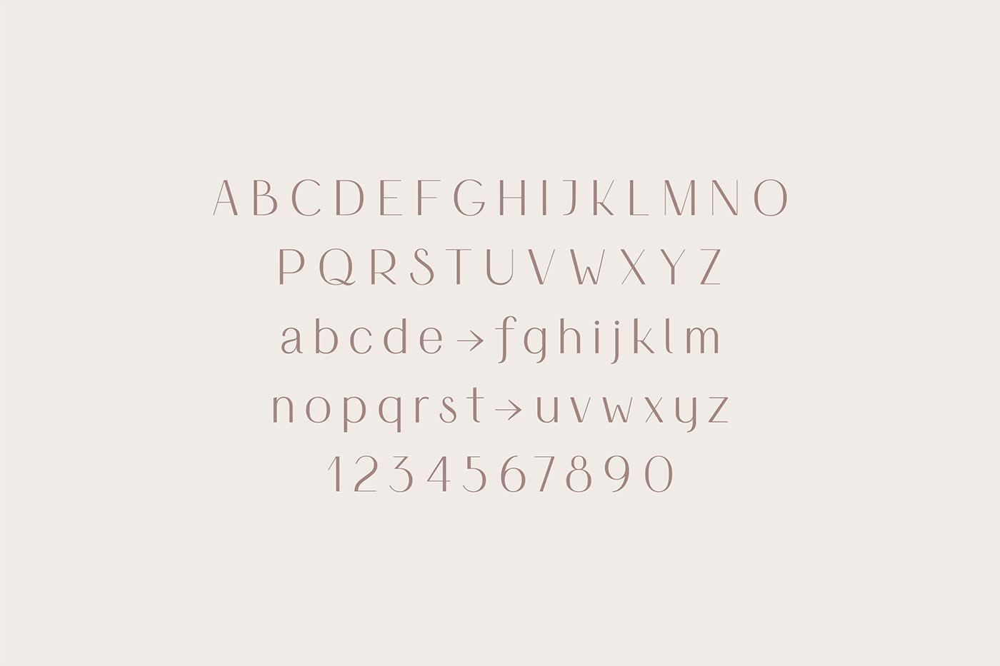 font Typeface type