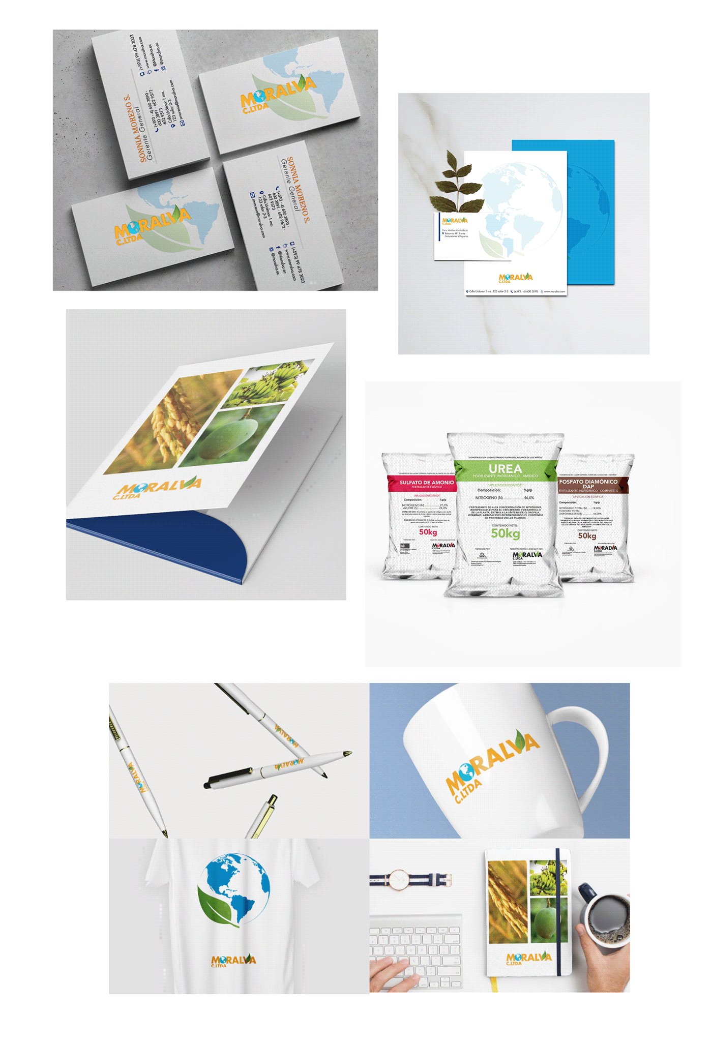 diseño gráfico adobe illustrator Adobe Photoshop devops graphic design  branding  websites Responsive marca