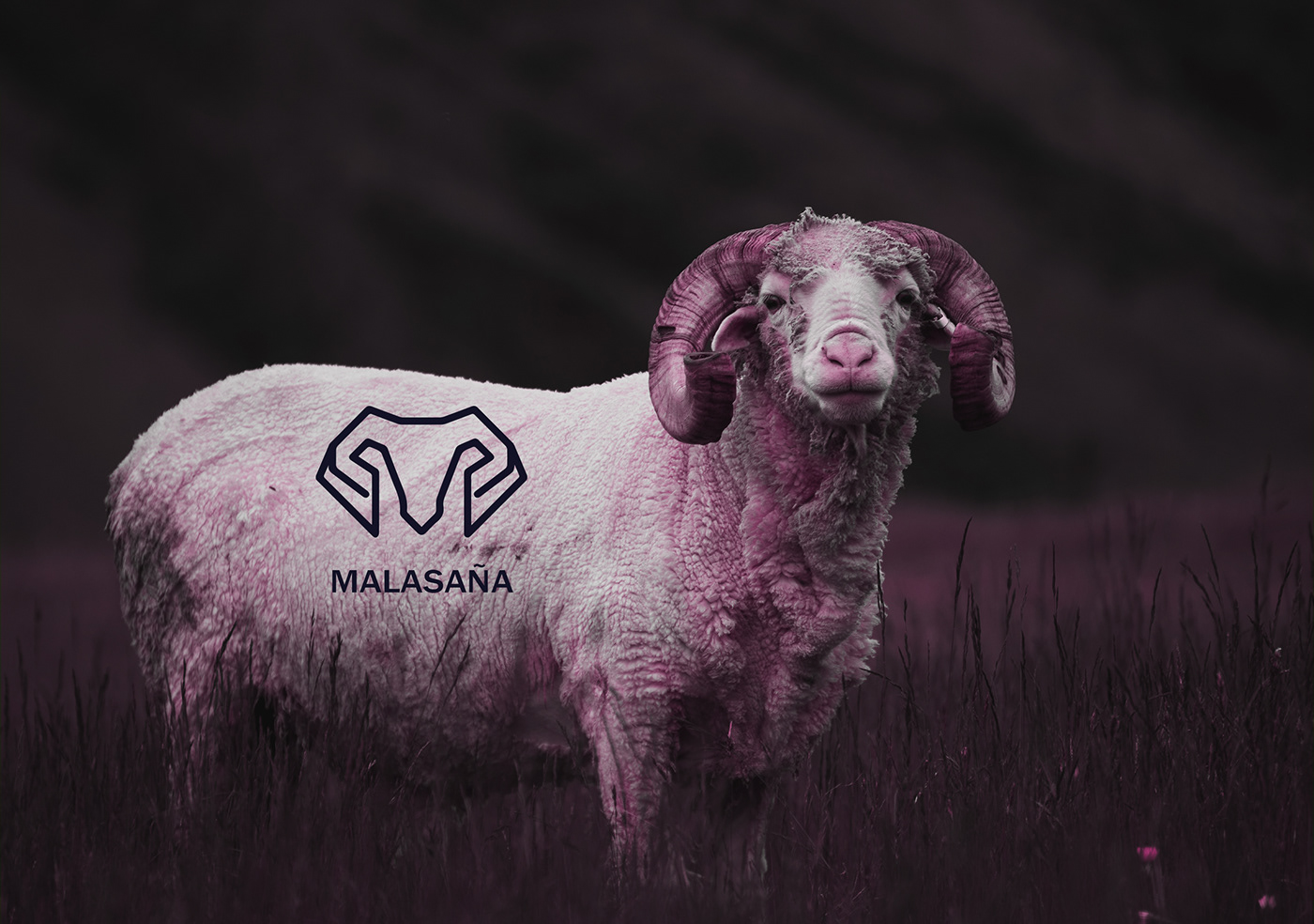 animal,corporative,logo,minimal,ram,rose