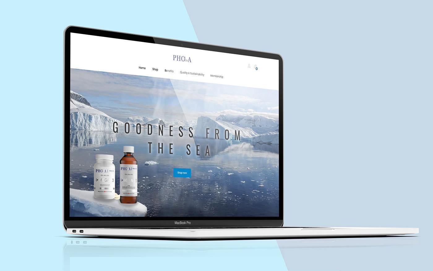 Web Design  Ecommerce development animation  wordpress HTML css after effects photoshop