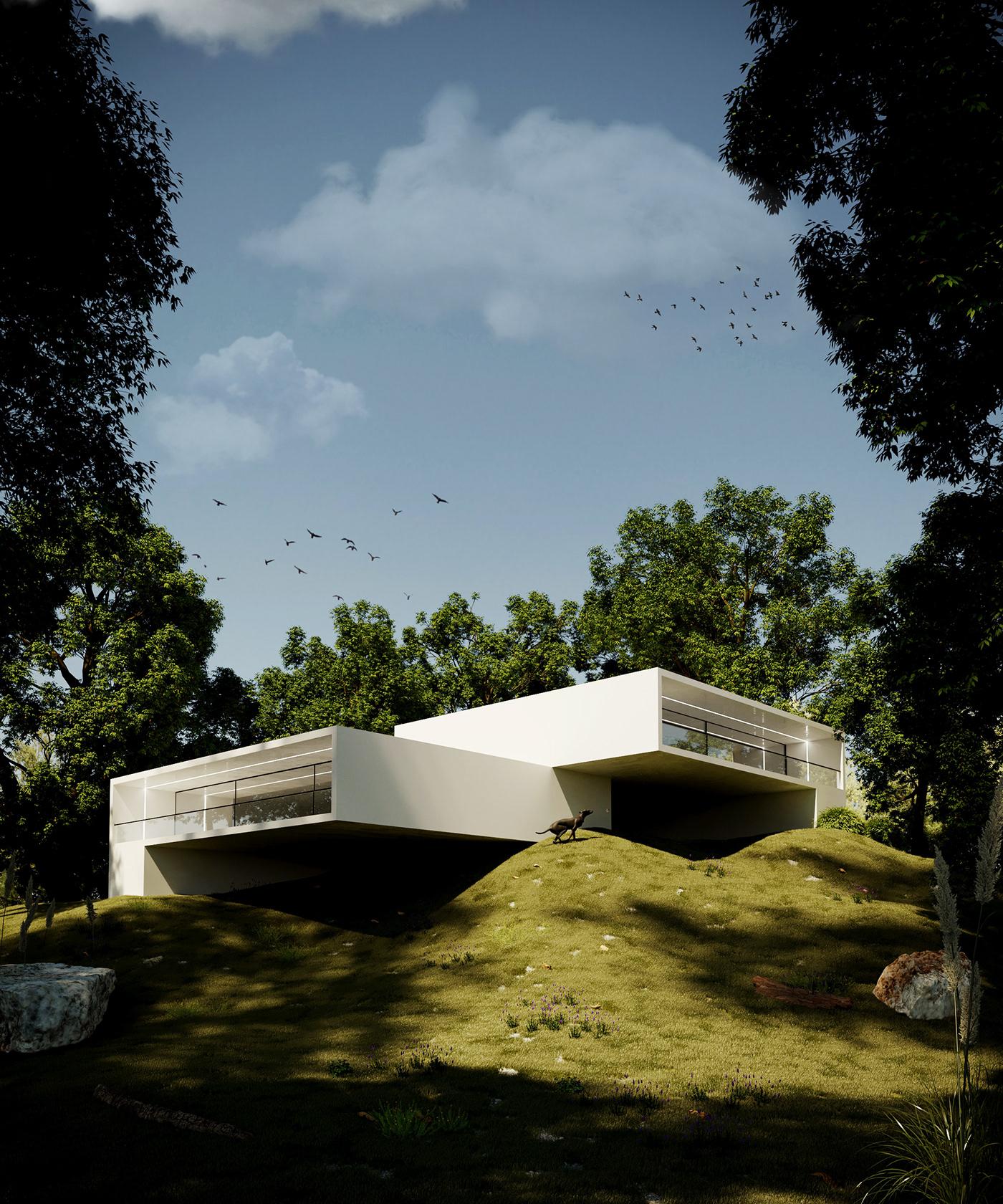 3D Archiv arquitectura cinema4d CoronaRender  diseño forest house Render Tree