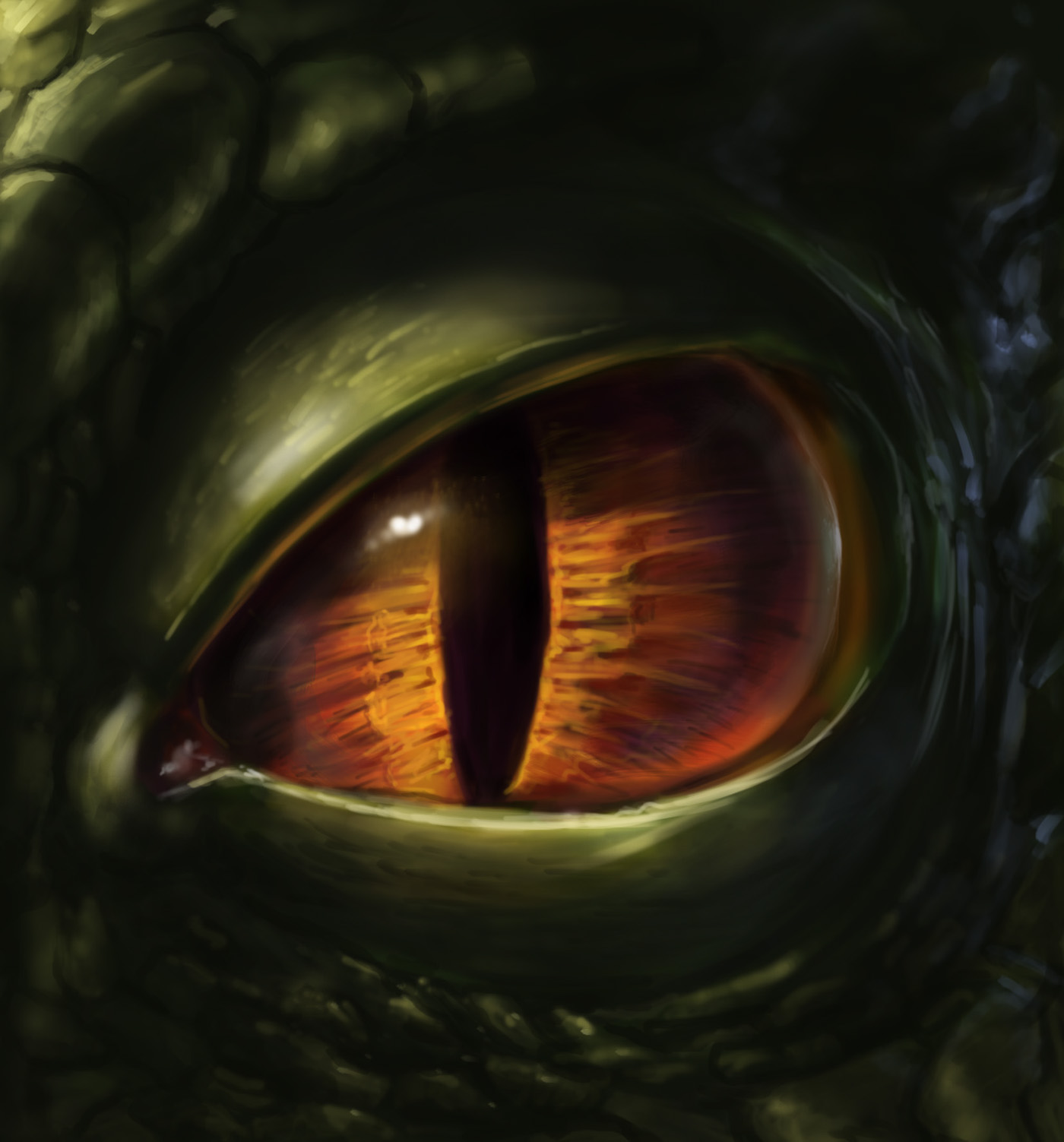 Eye Of A Dragon