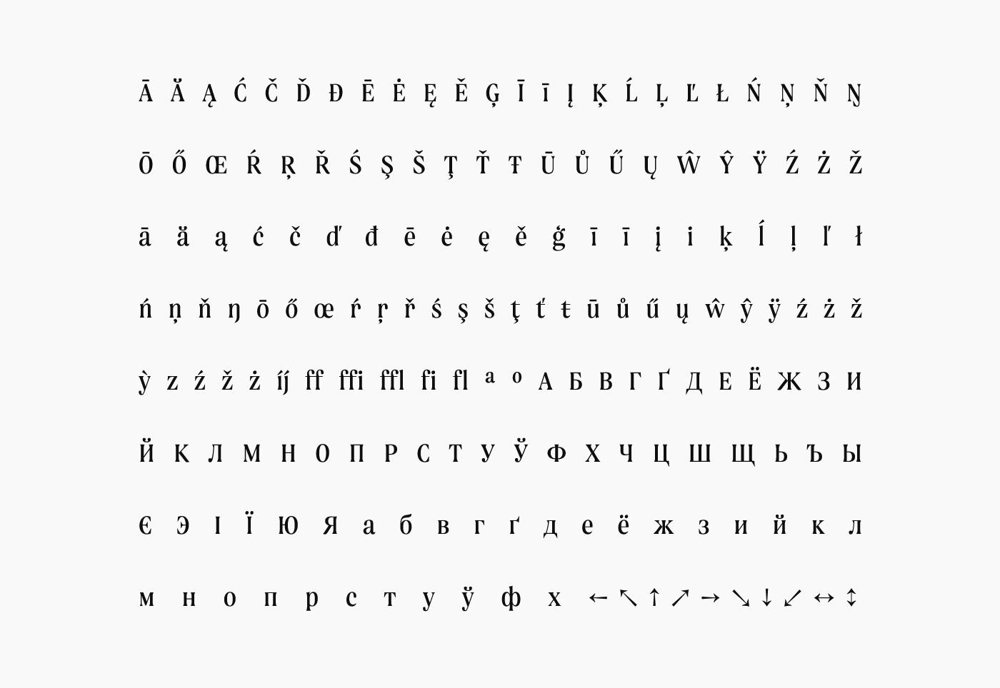 Fashion  branding  serif editorial Display logo Cyrillic Web The Northern Block