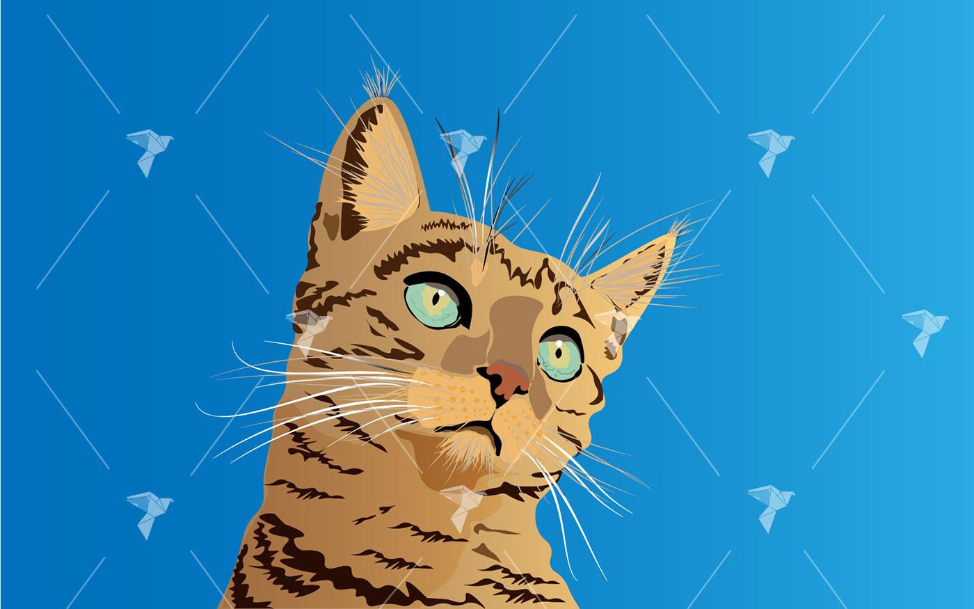 animal Cat cute felin ILLUSTRATION  Illustrator kitty Miao Pet realistic