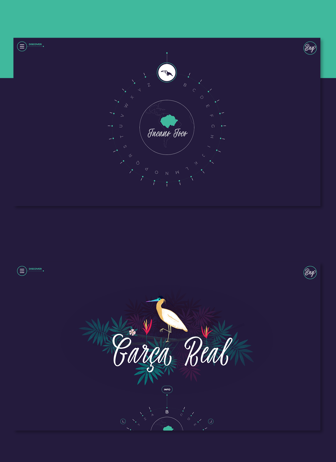 Amazon ILLUSTRATION  animals font ux animation  e-commerce Script FWA rainforest