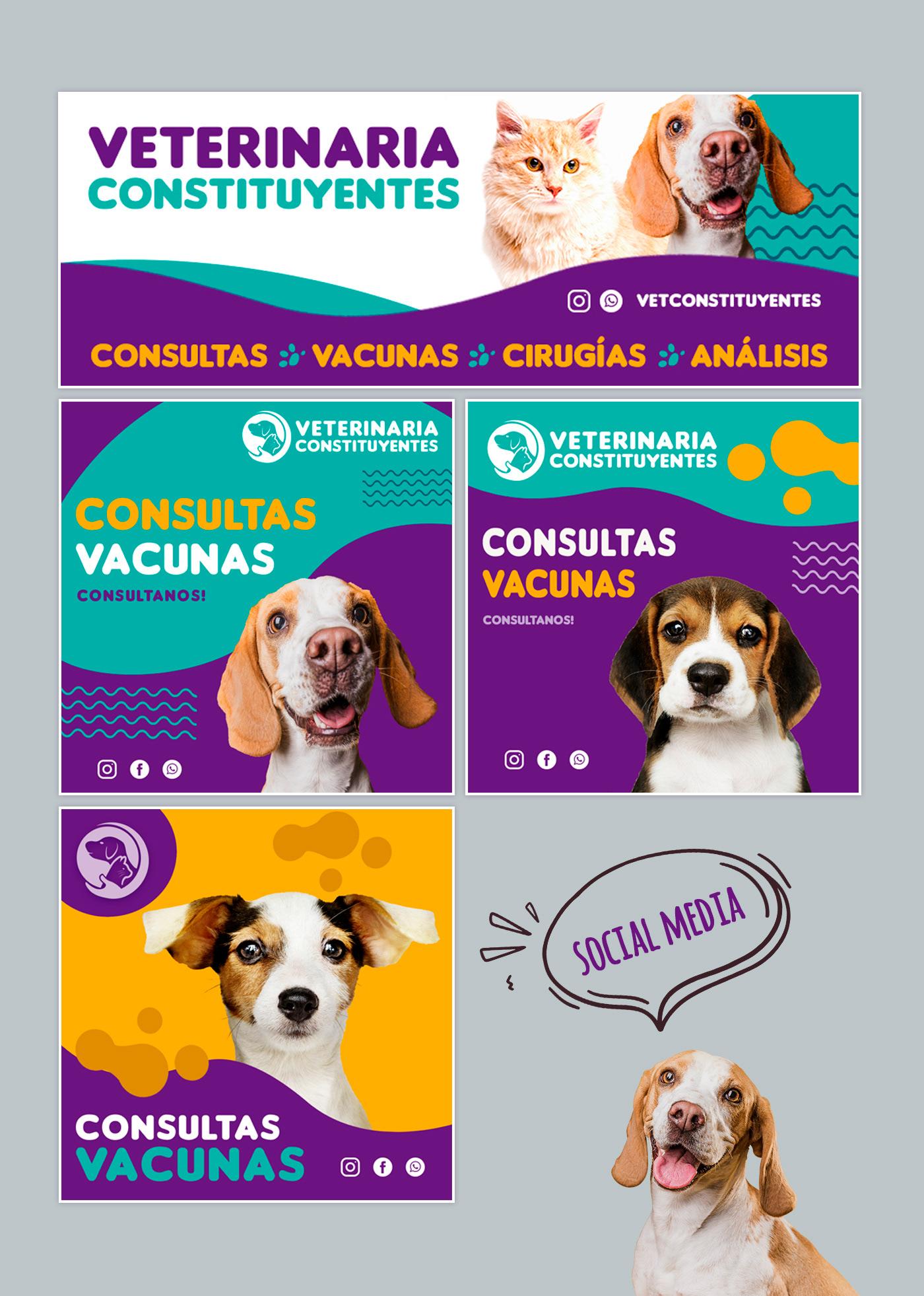 logo Logotipo mascotas petshop veterinarias