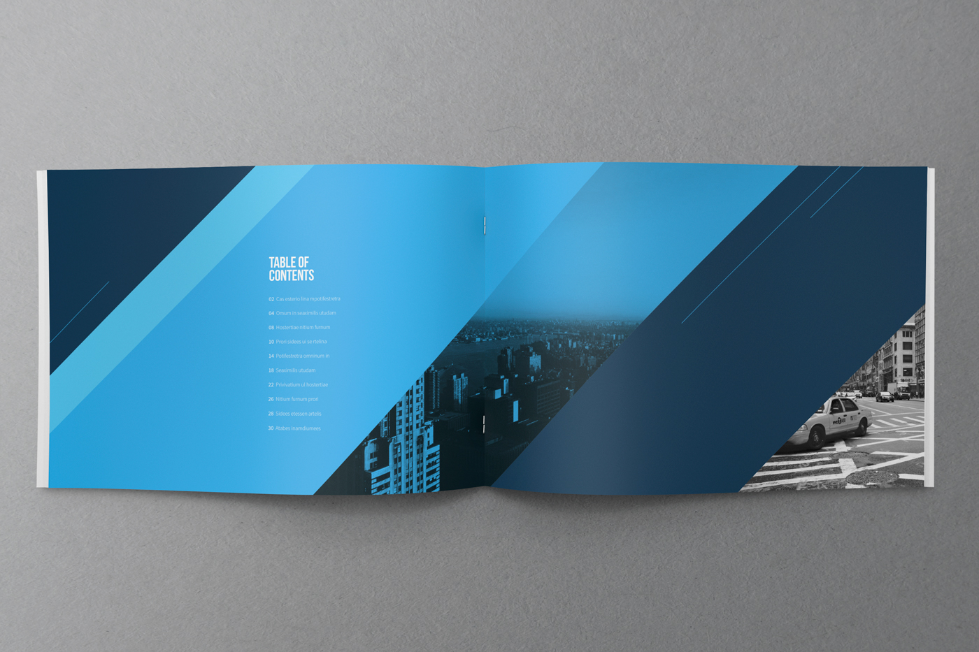 cool blue modern brochure on behance. Black Bedroom Furniture Sets. Home Design Ideas