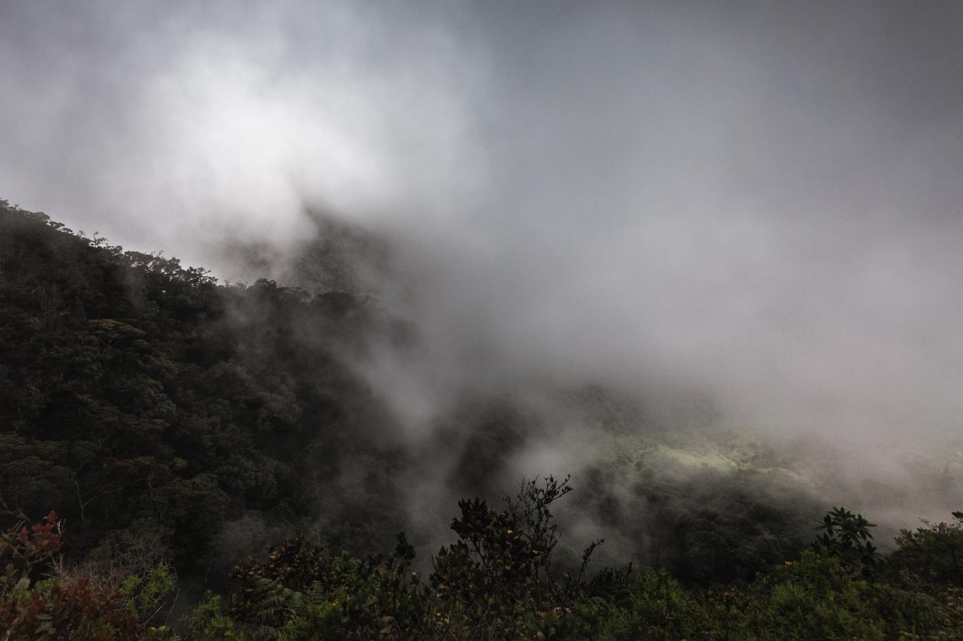 Image may contain: smoke, train and fog