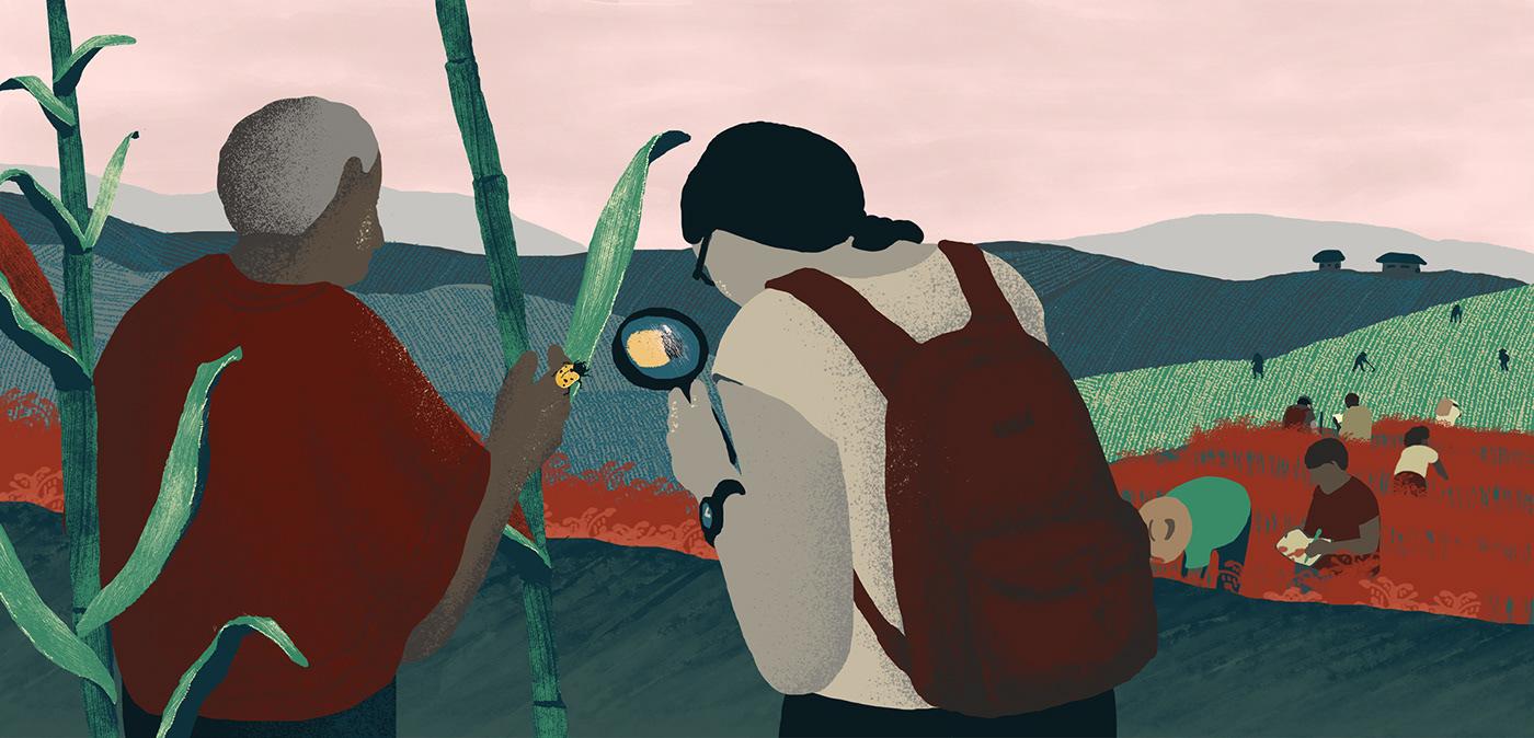 seed fairtrade agriculture venezuela law dupont Monsantos Production farmer campesino