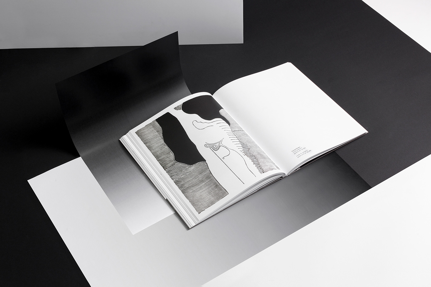 book cover design editorial Exhibition  graphic Layout Photography  publication typography
