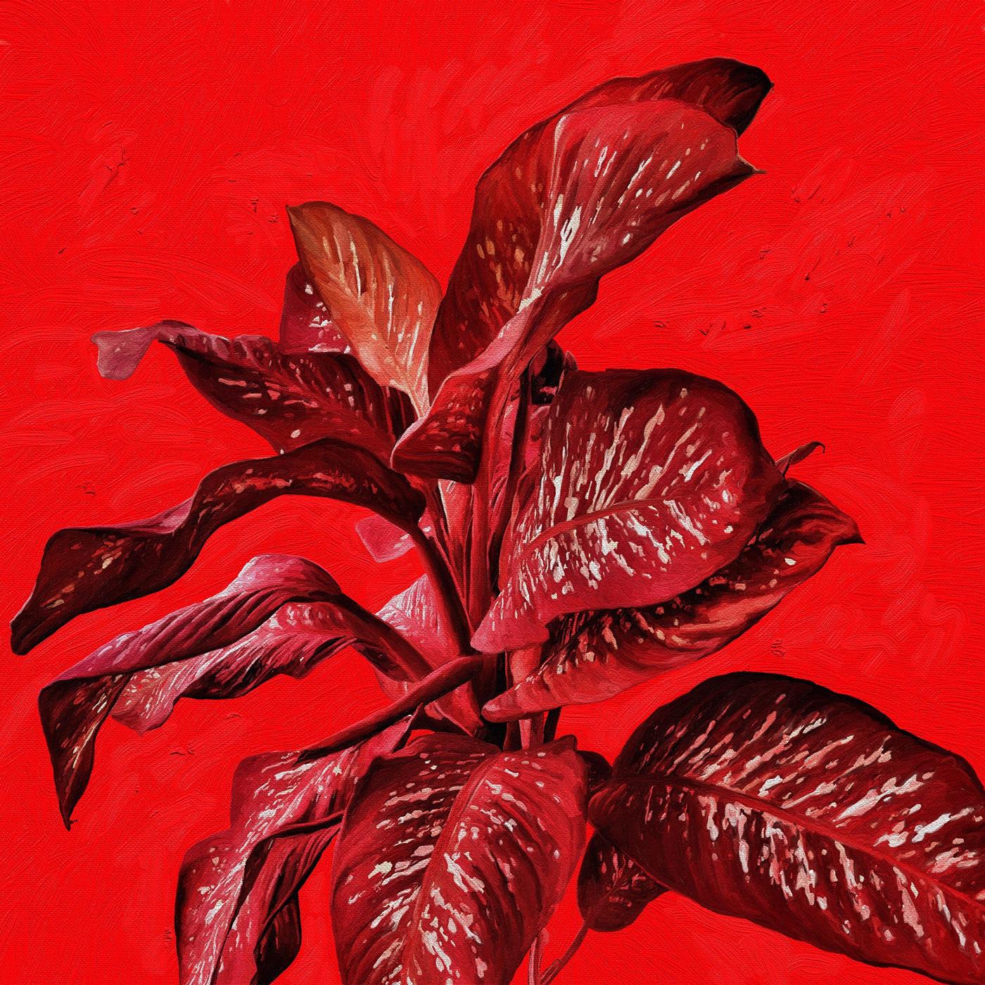 Brazilian painting contemporary art Contemporary painting digital painting Flora pintura vida nua