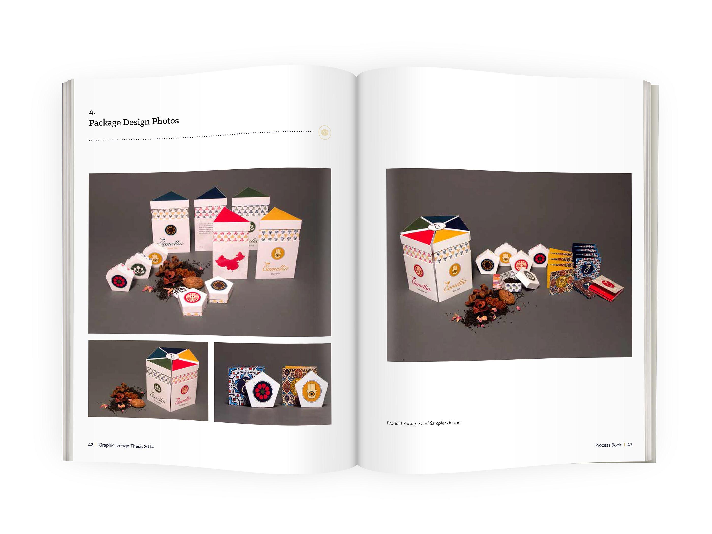 Graphic design thesis topics business plan esempio bar