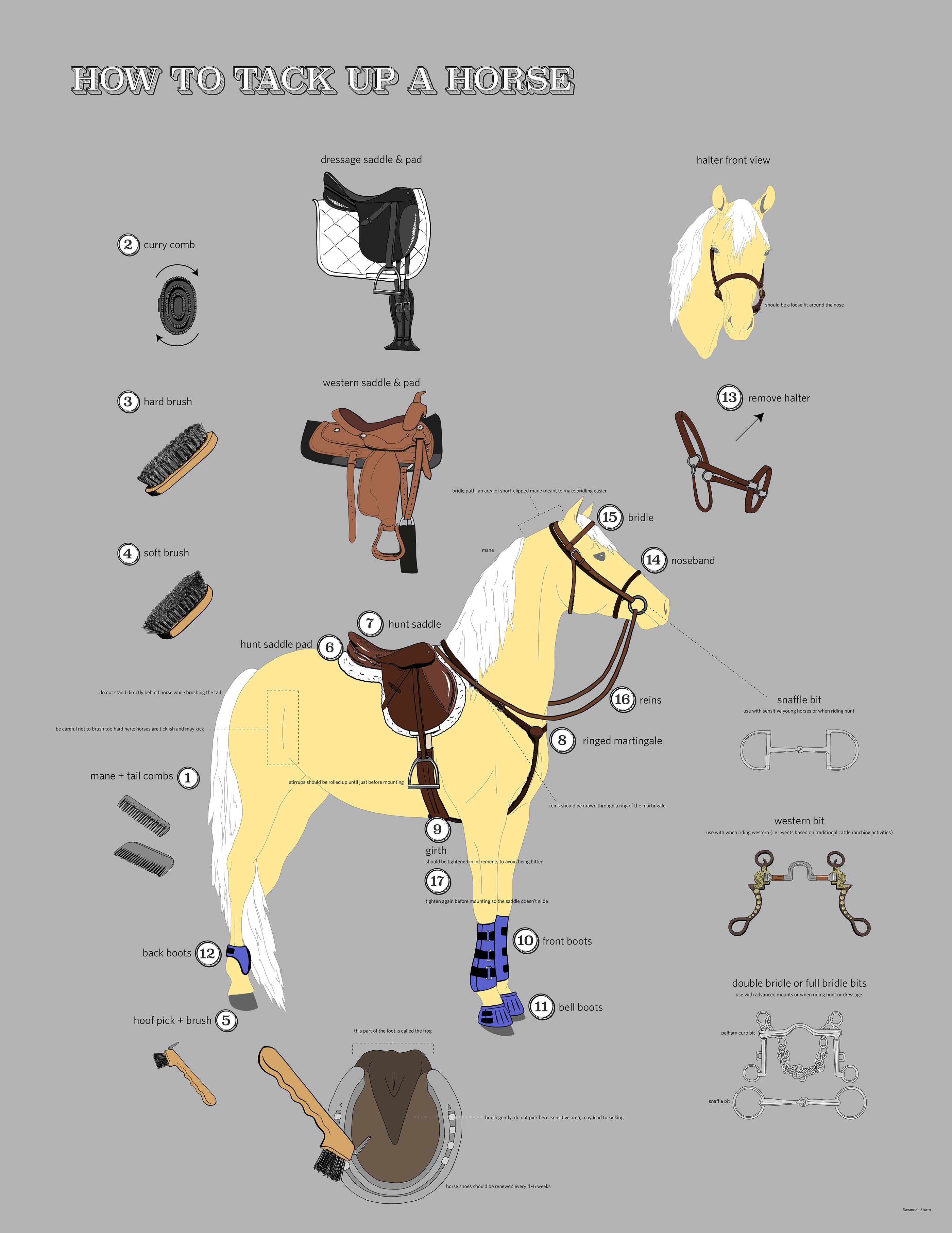 How To Tack Up A Horse On Behance
