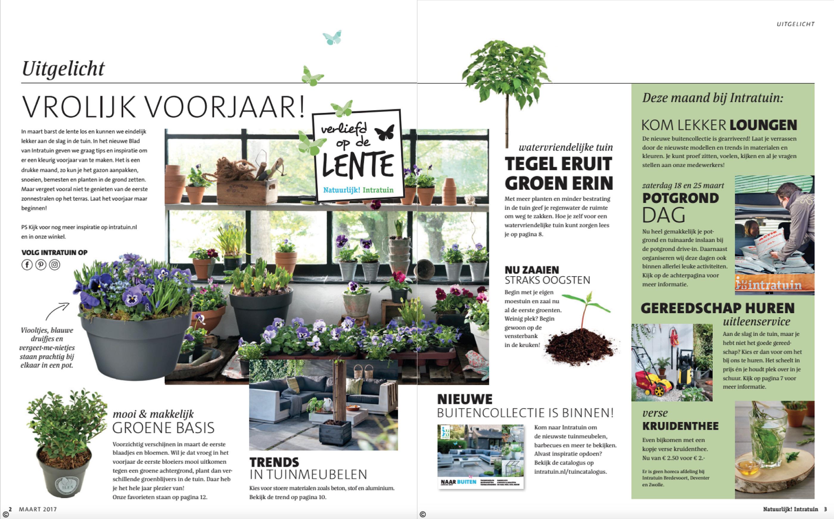Intratuin Magazine Ism Jump On Behance