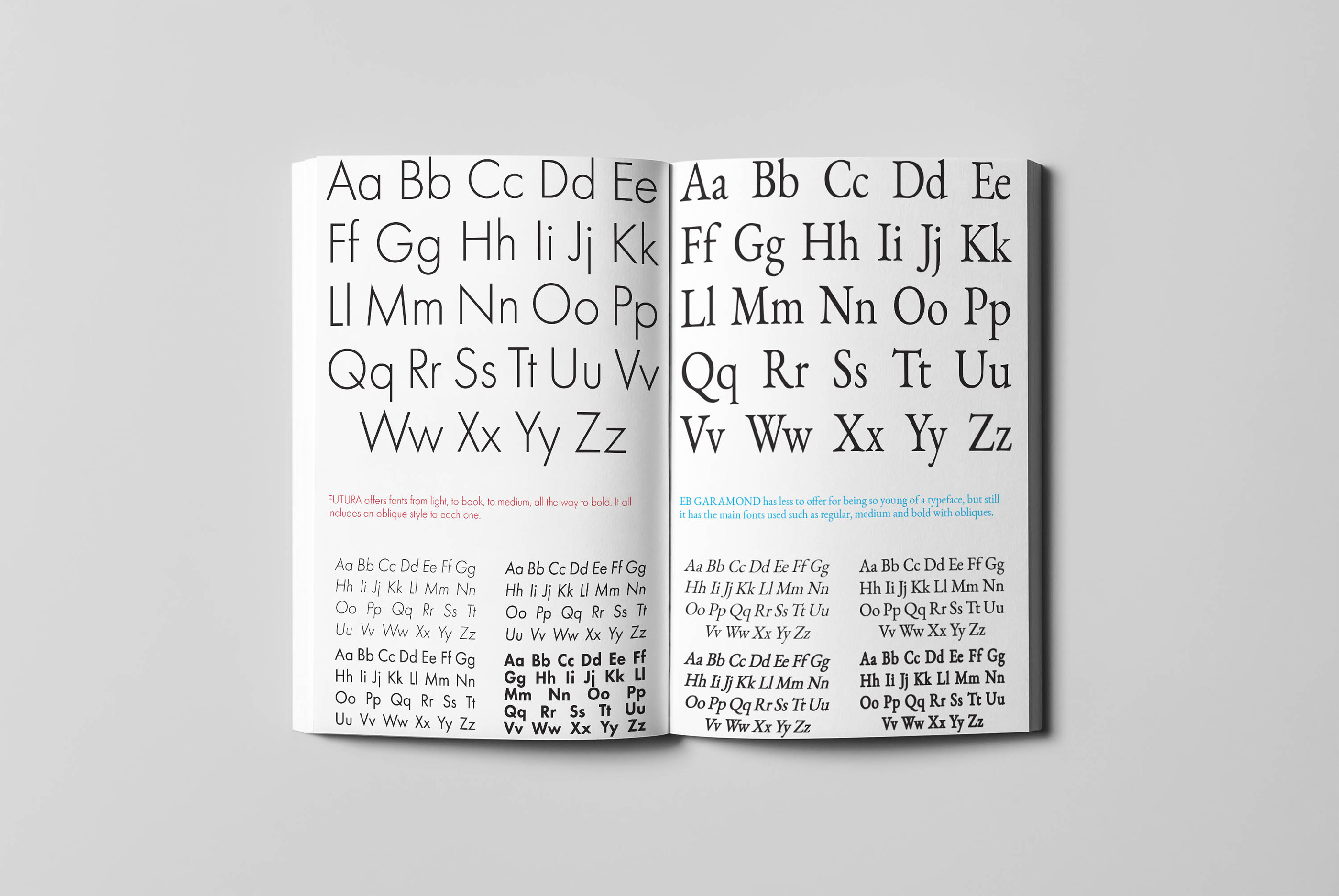 Complementary Typefaces Book on Behance