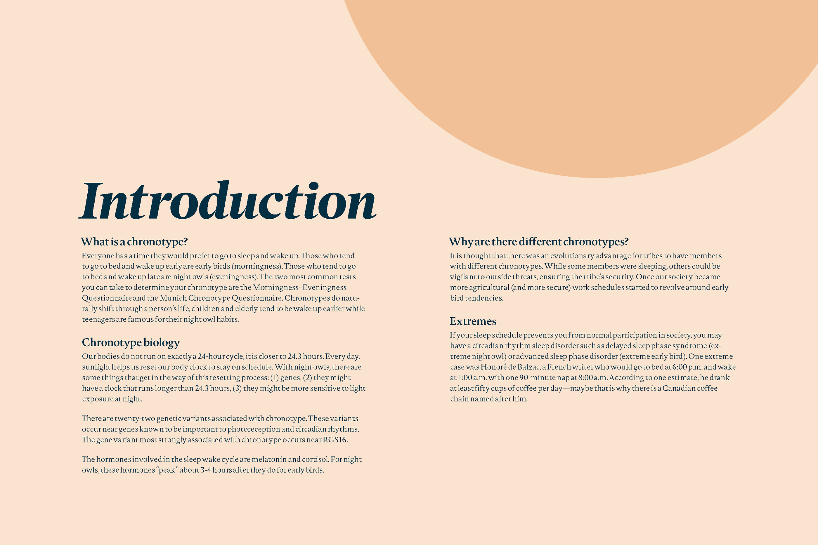 Early Birds and Night Owls Booklet (print) on Behance