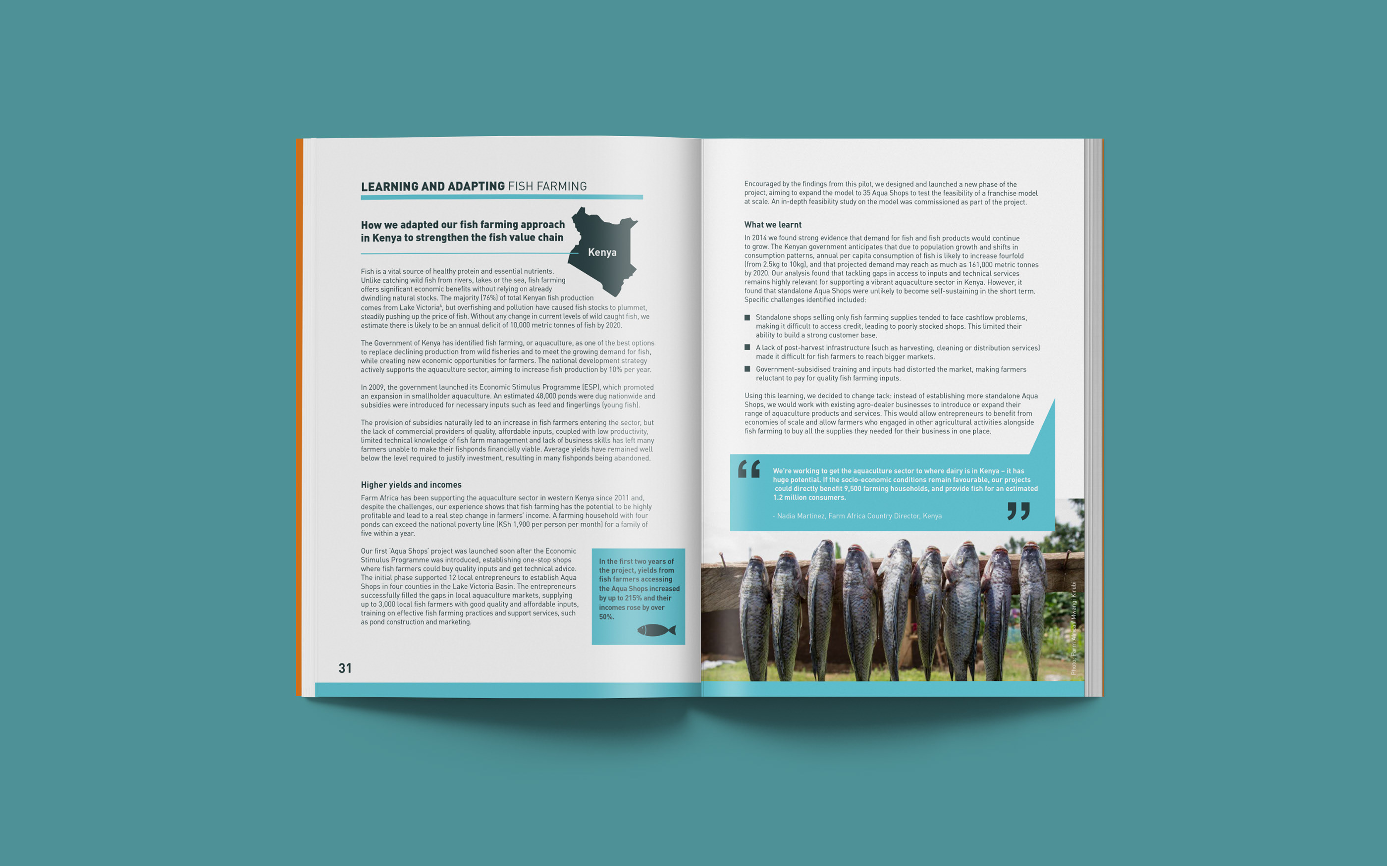 Impact Report on Behance