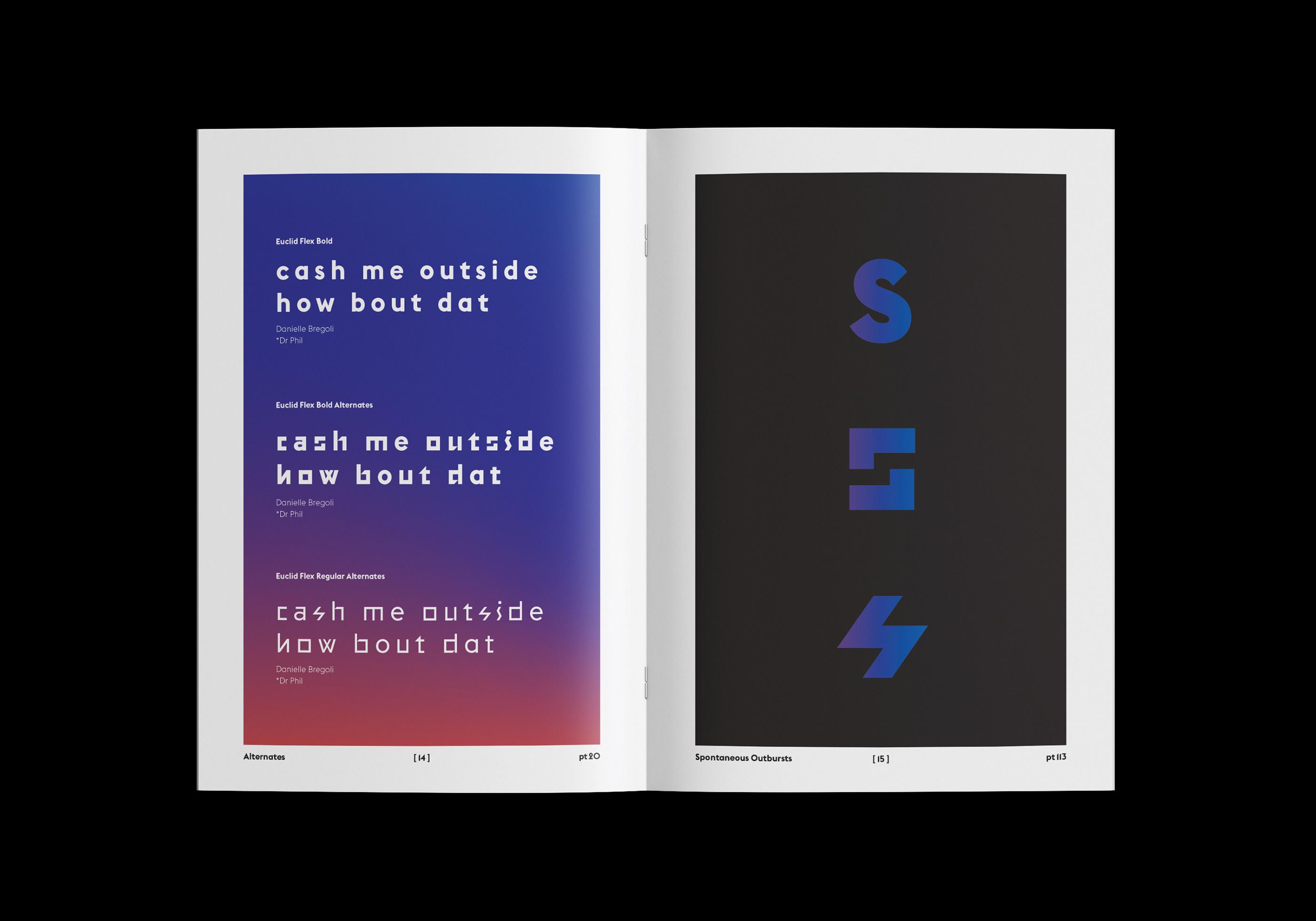 Euclid Flex Medium Font Download