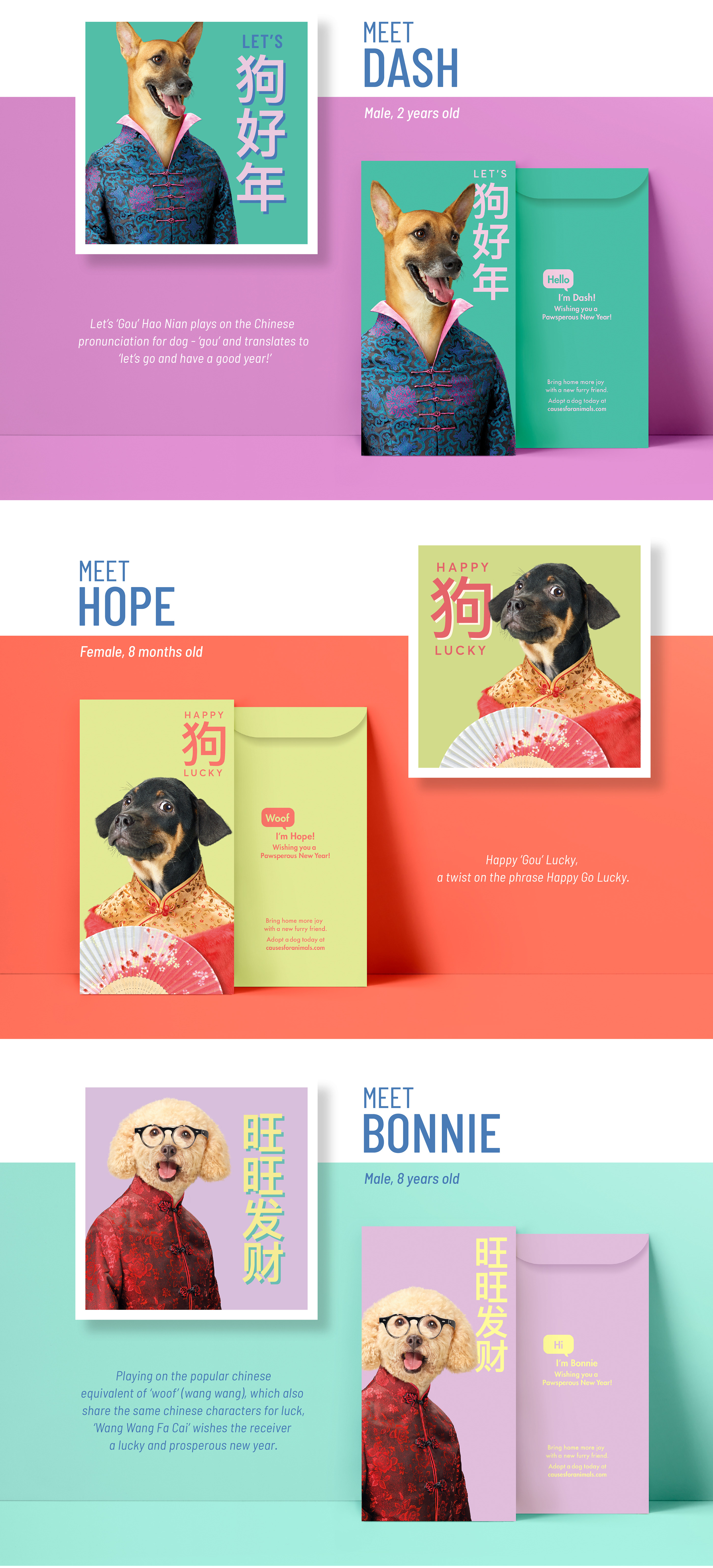 Every dog has its year' – CNY Dog Adoption Project on Behance