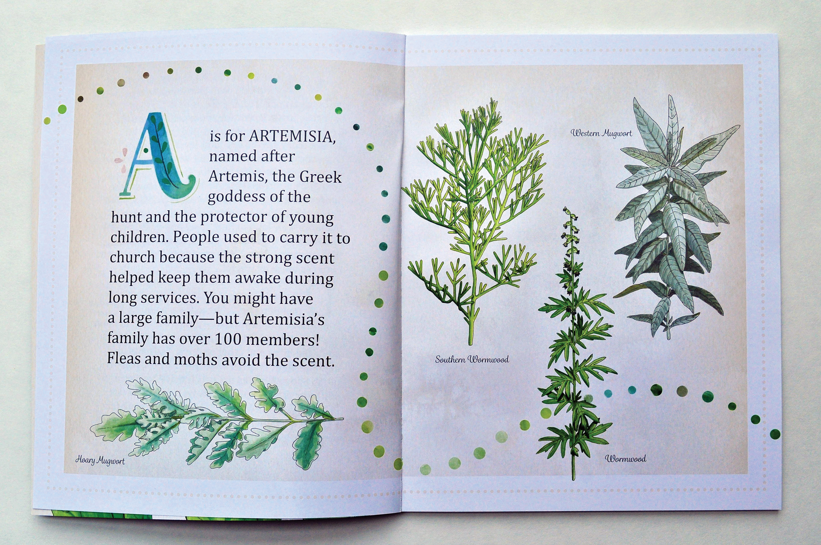 Herbs A to Z on Behance