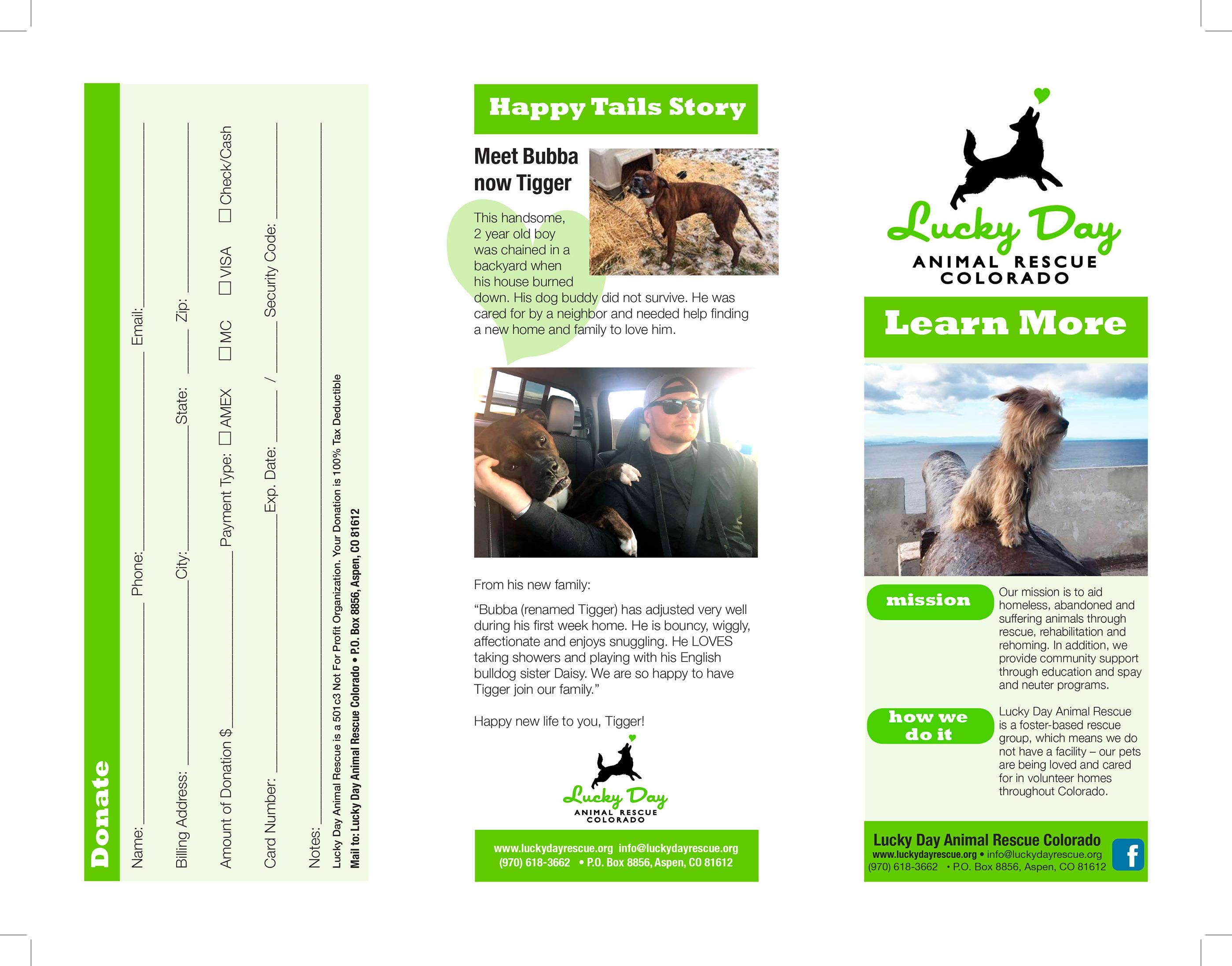 Lucky Day Animal Rescue Colorado Brochure on Behance
