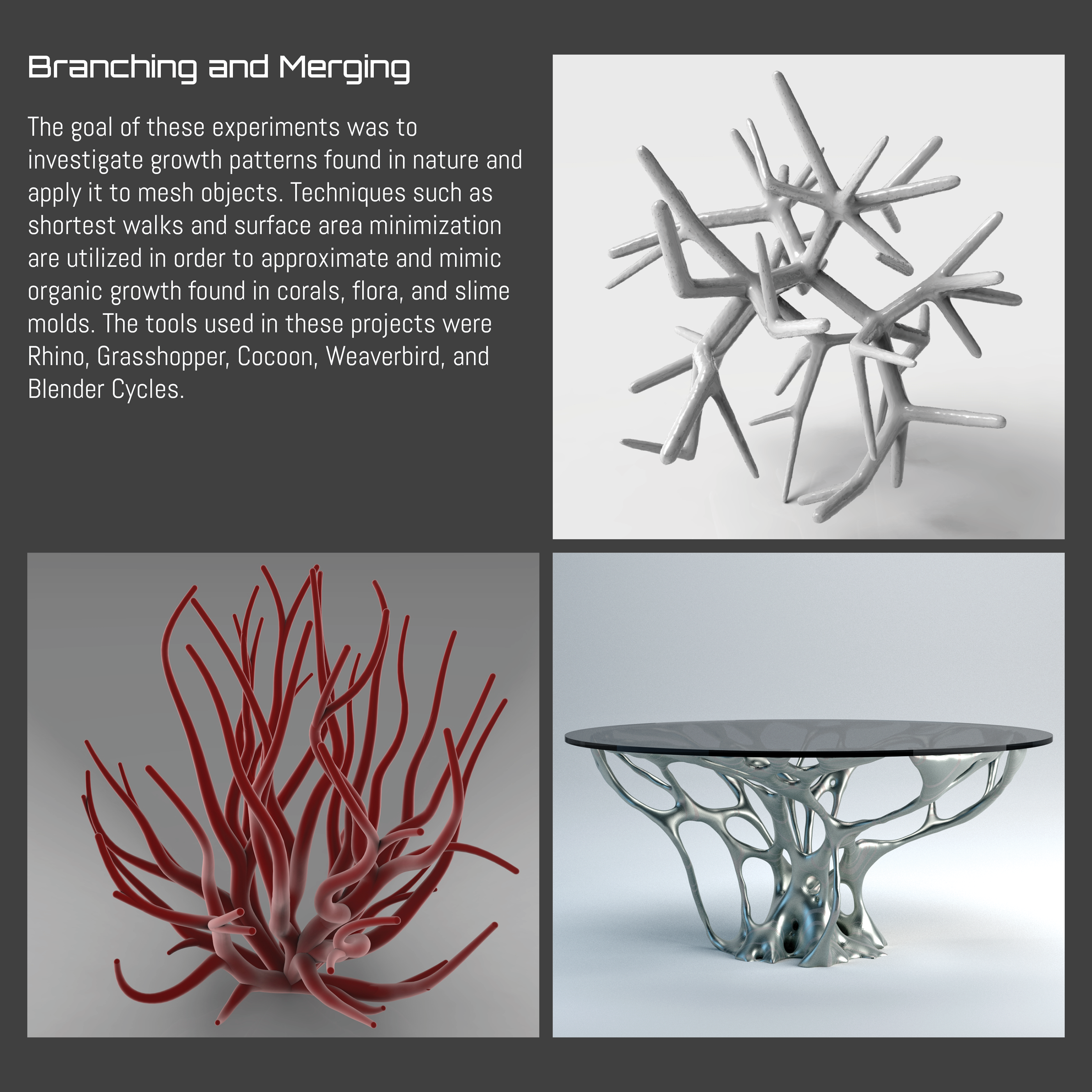 Algorithms and Explorations on Behance