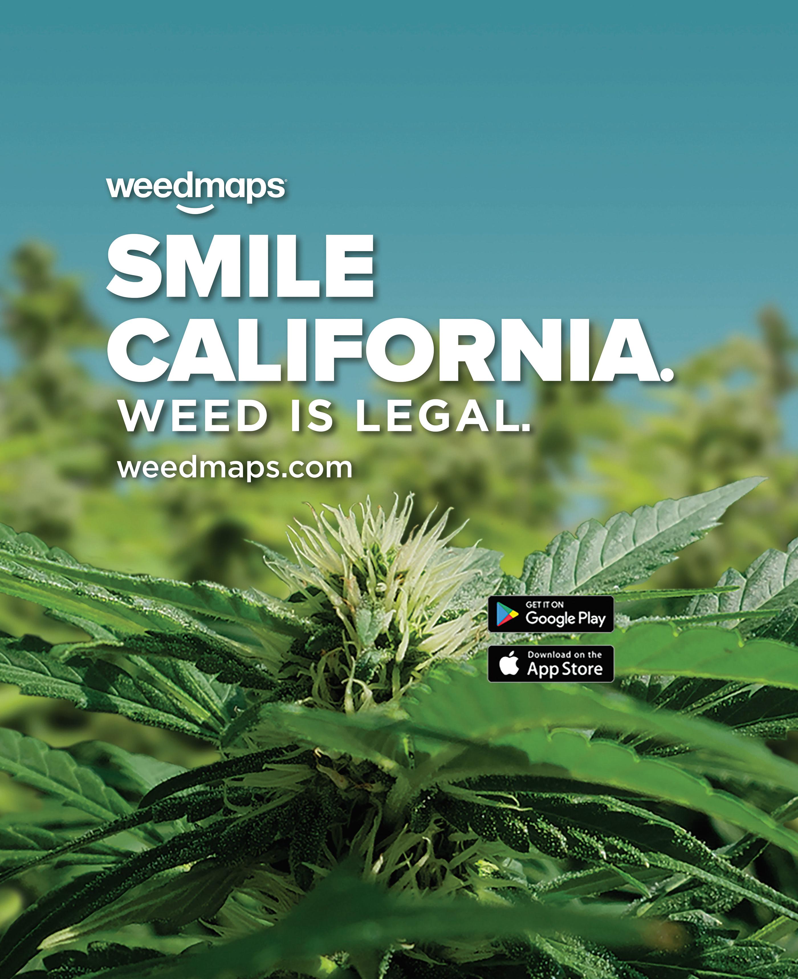 Weedmaps Jan 01 Legalization SF Bus Wrap on Behance