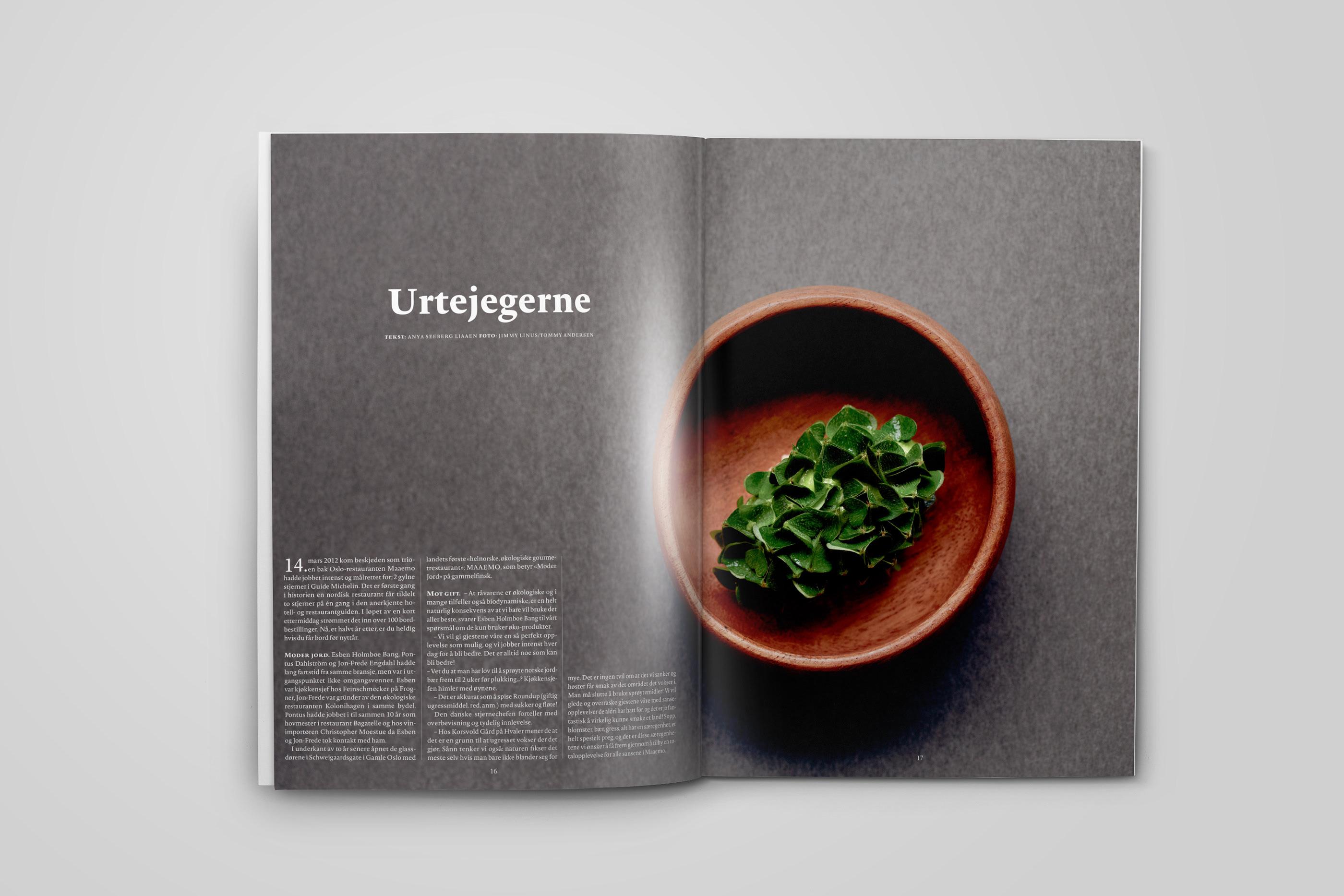Gastro - Food magazine on Behance