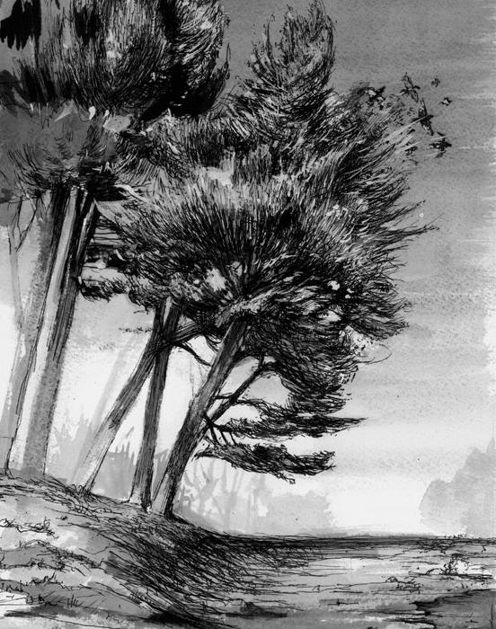 Landscape Drawings On Behance